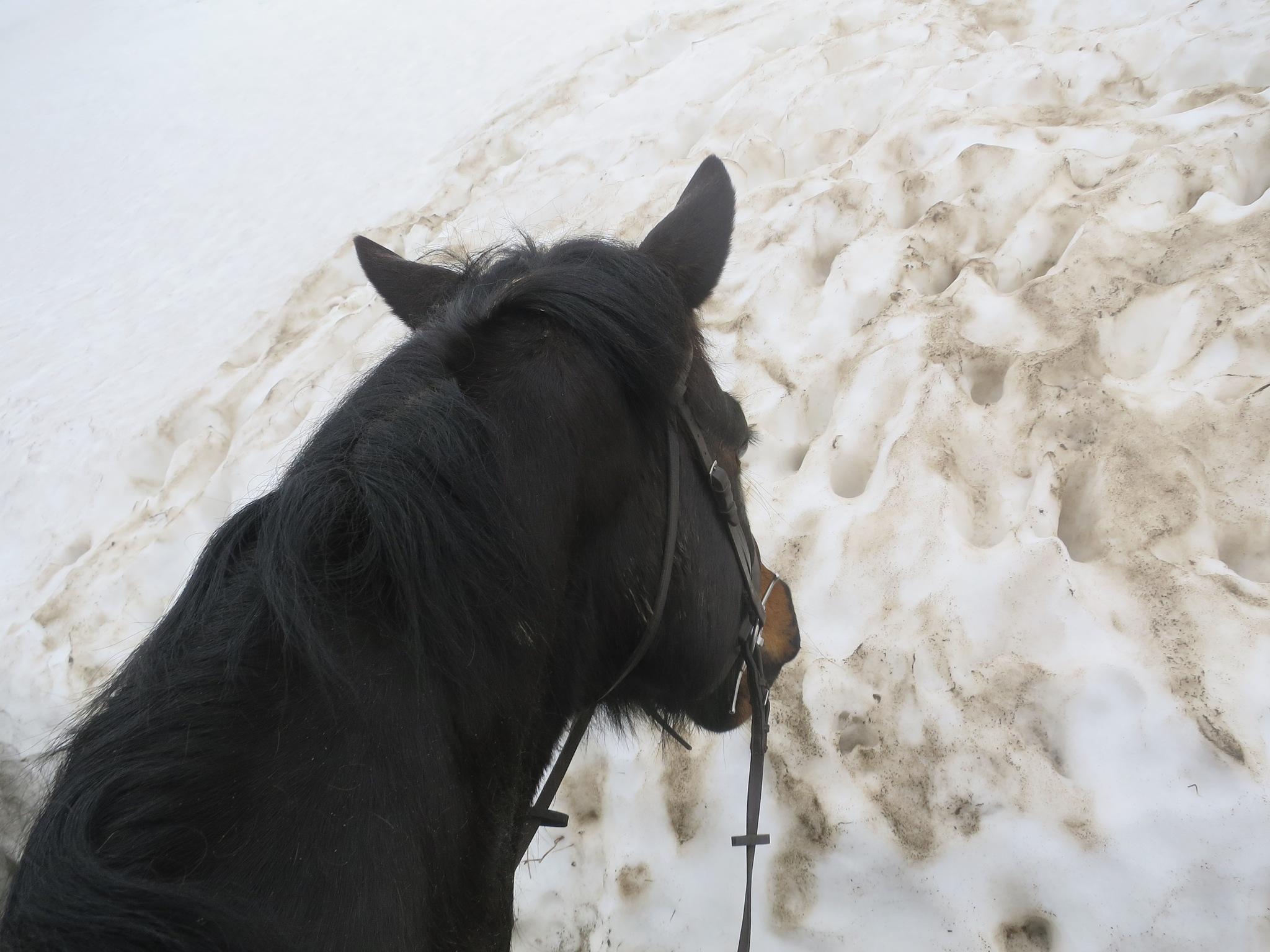 Welsh/English Border Ride 21 by GraemeLeePollard