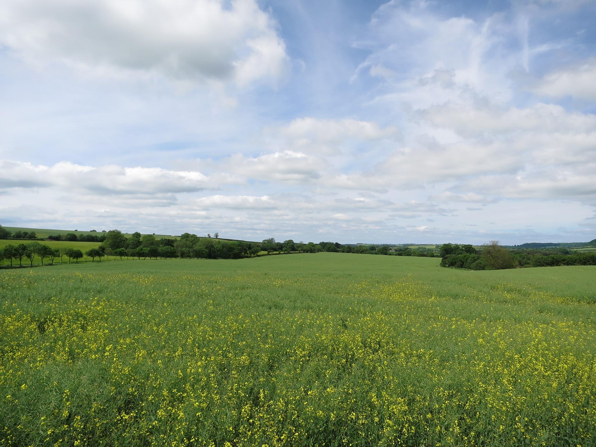 Lincolnshire Wolds 7 by GraemeLeePollard