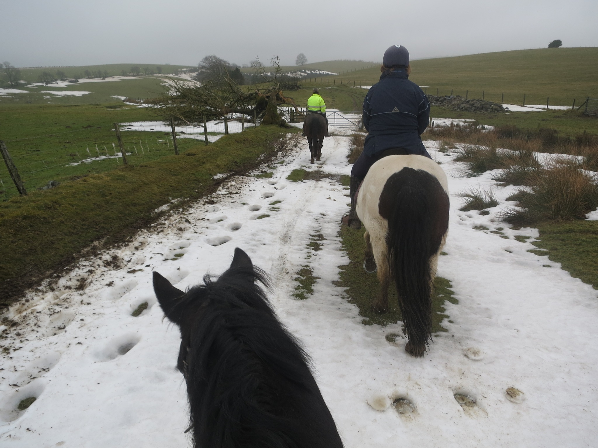 Welsh/English Border Ride 14 by GraemeLeePollard