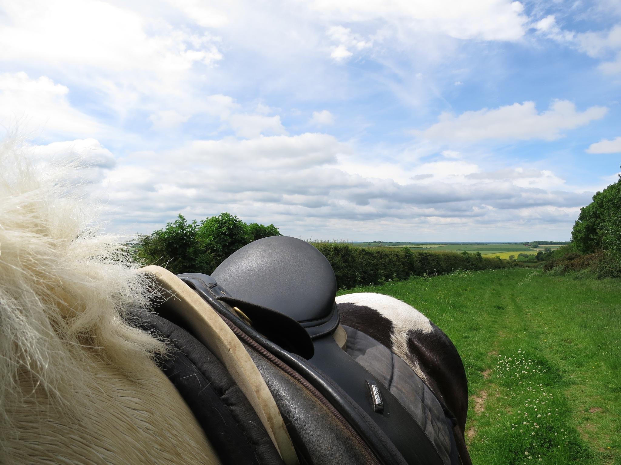 Lincolnshire Wolds 5 by GraemeLeePollard