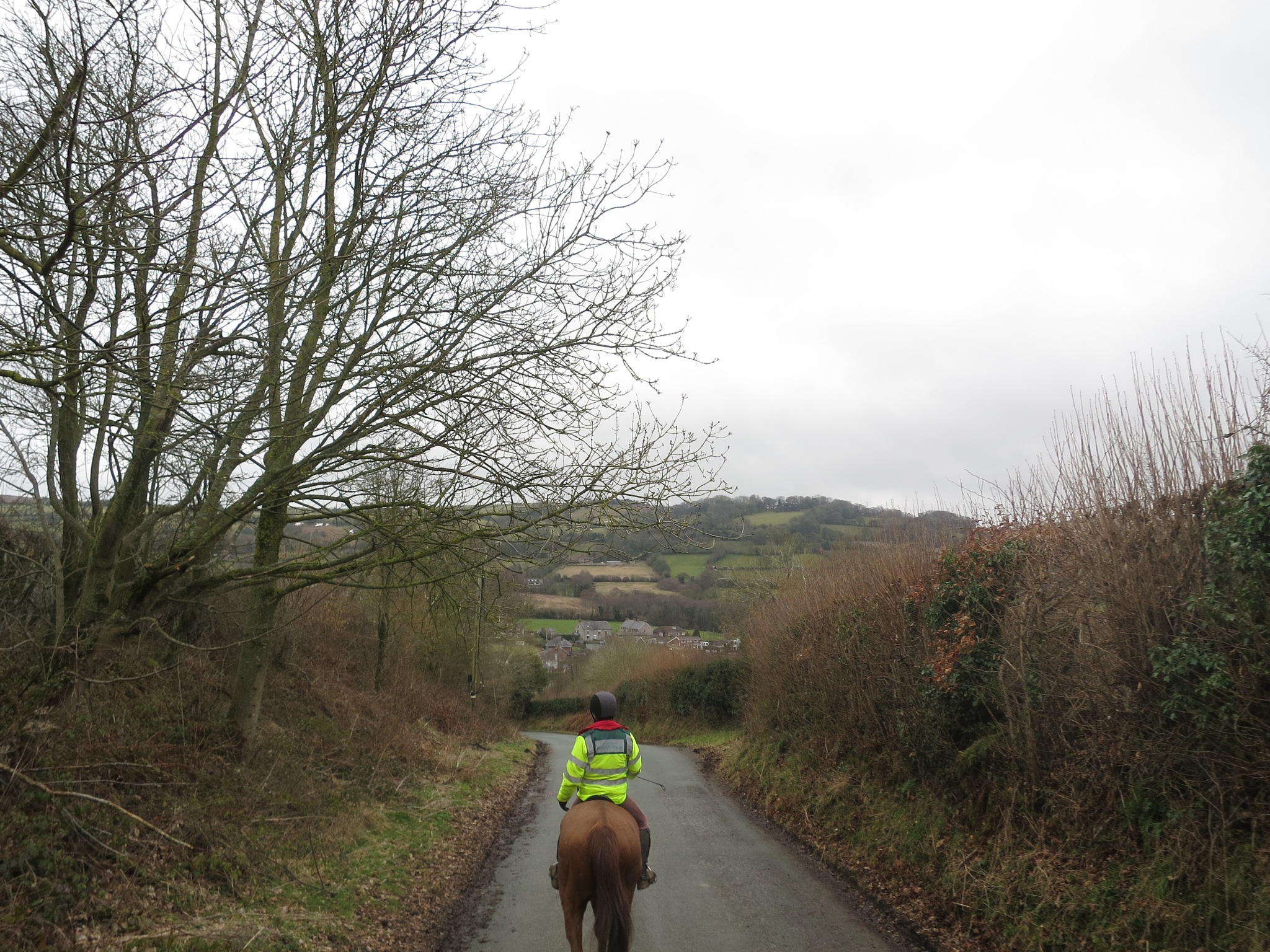 Wrexham Riding by GraemeLeePollard