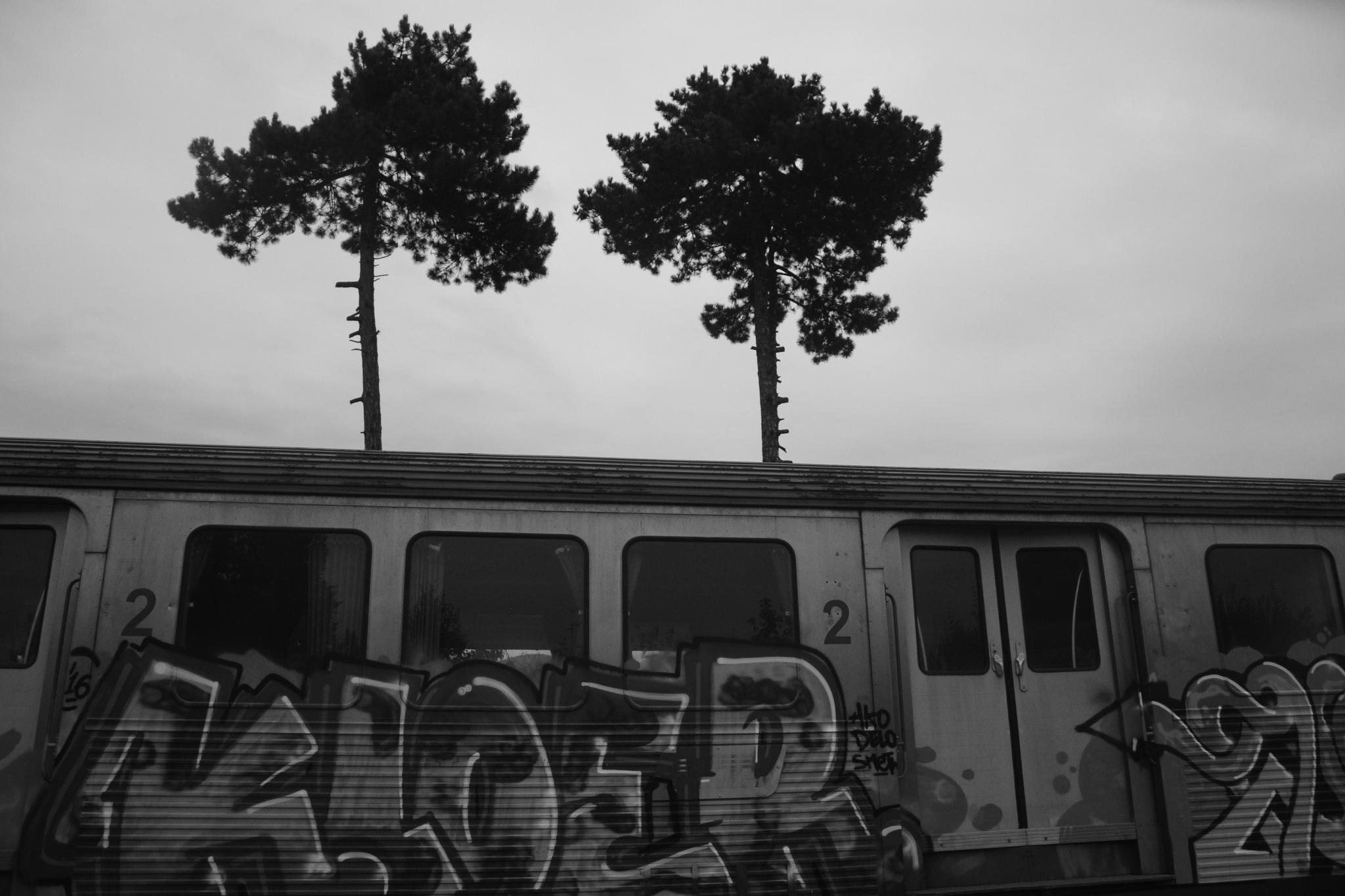 Rasnov Railway Station 6 by GraemeLeePollard