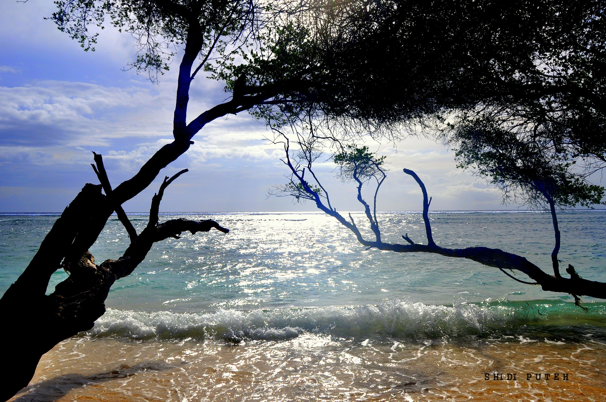 Serenity by Shidi Puteh