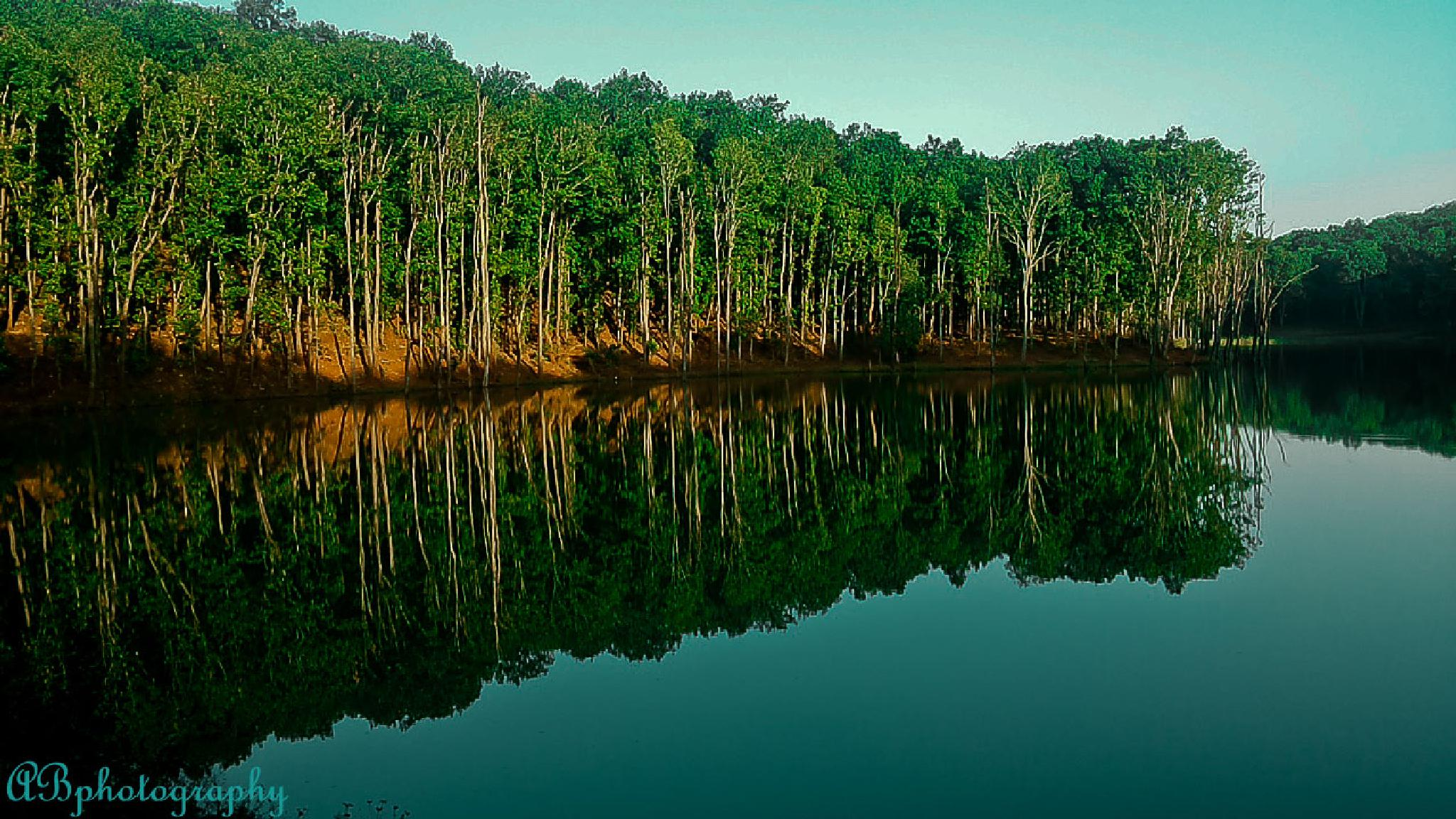 Reflection... by banikabhishek003