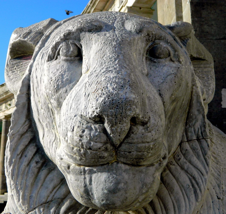 Naples - The Lion and The Bird by Arnaldo De Lisio