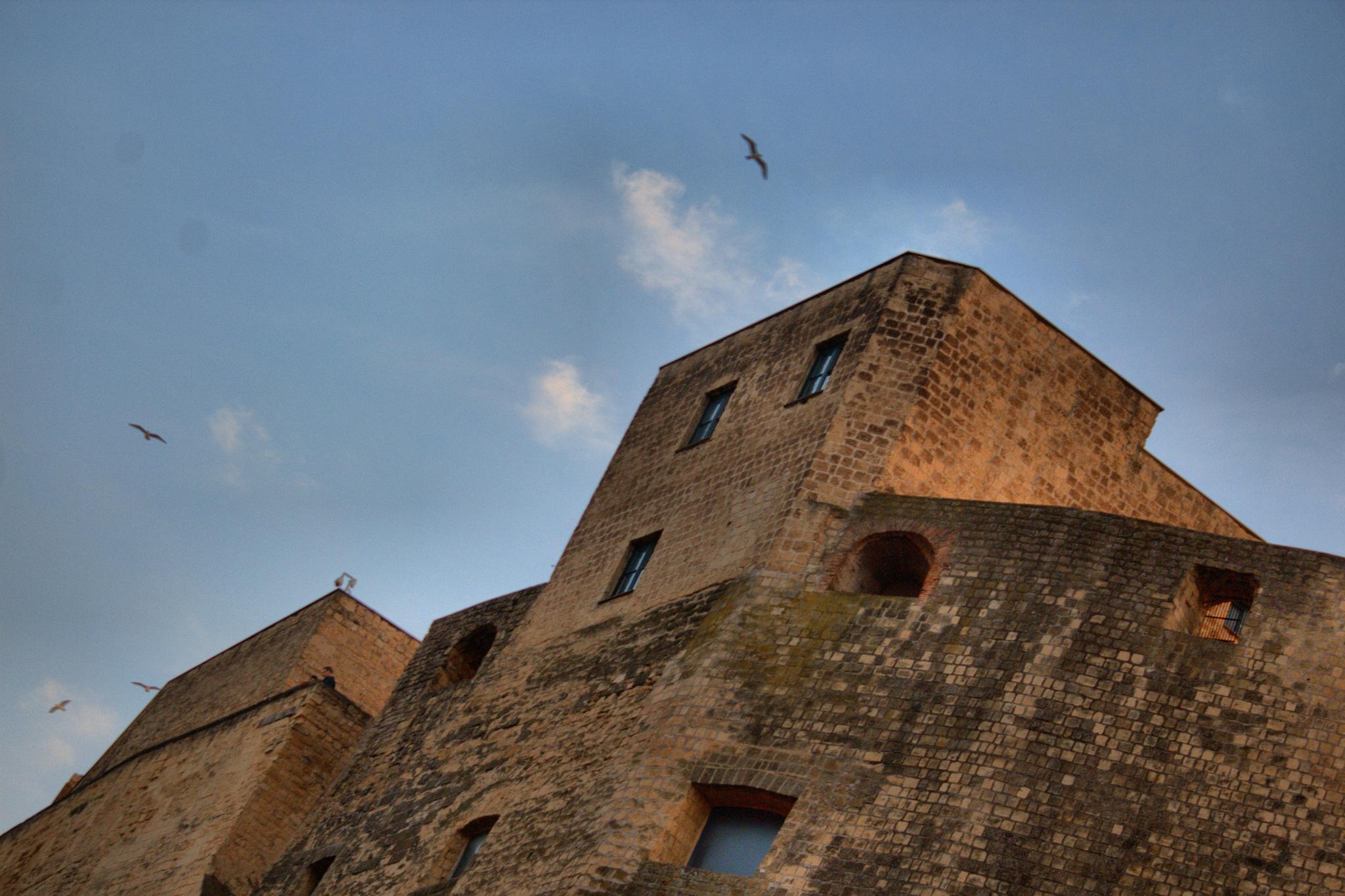 Naples - Castel dell'Ovo With Seagulls - 01 by Arnaldo De Lisio