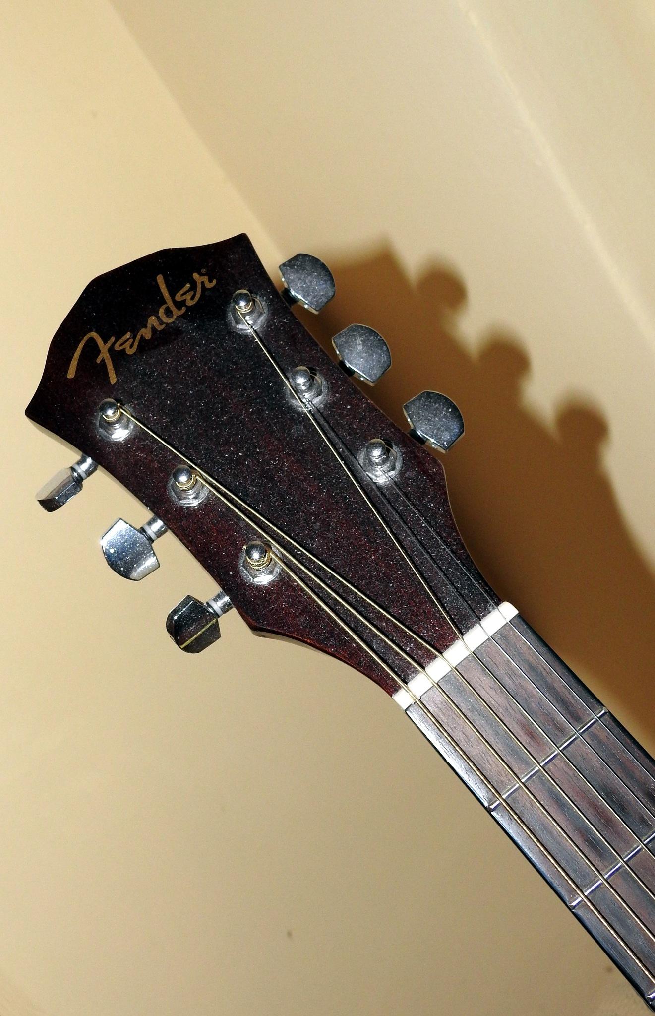 The Dust on the Fender - FA300CE by Arnaldo De Lisio