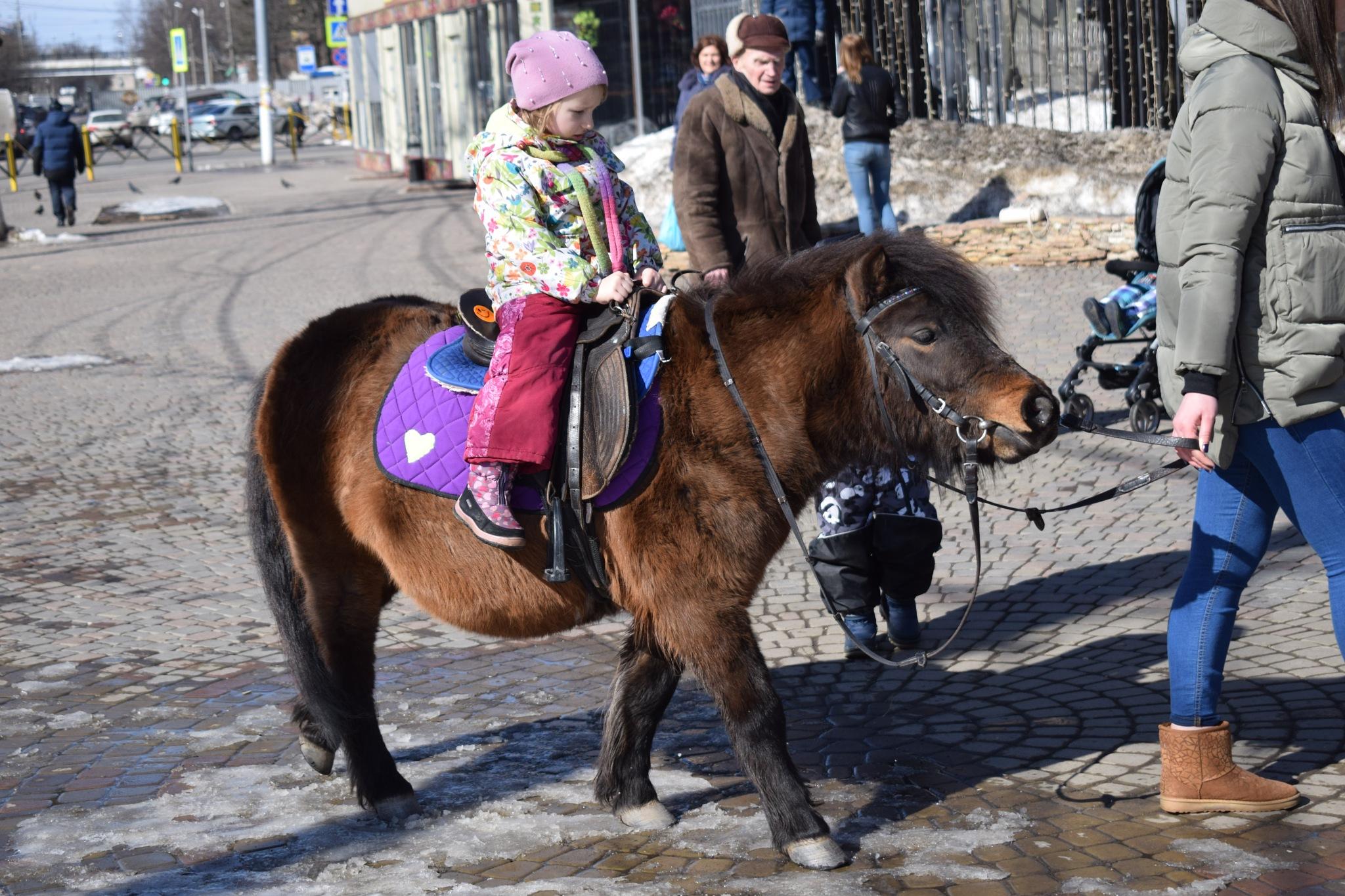 horse riding by Vadim Alibalaev