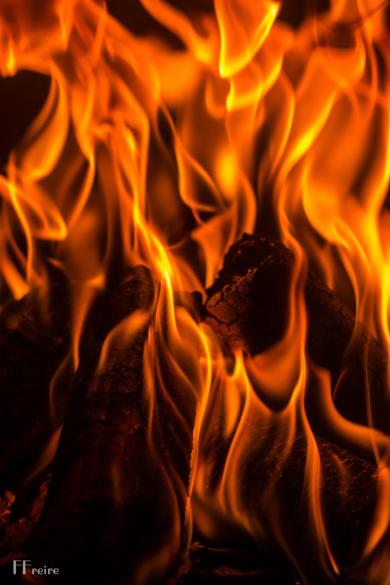 Em chamas!! by Fernando Joaquim Neves Freire