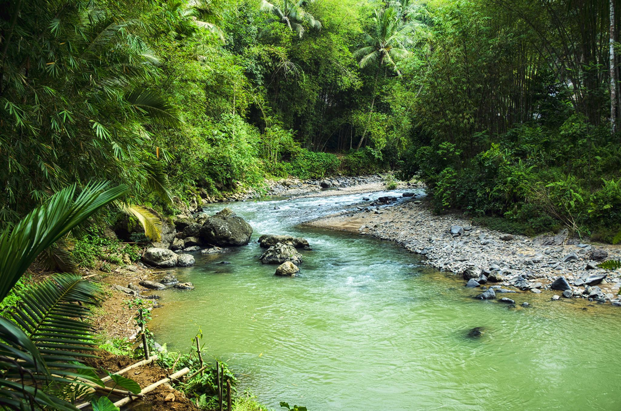 River of Baduy by Tommy Pratomo
