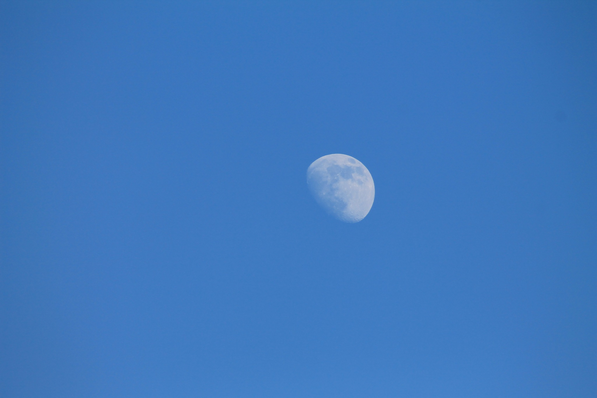 The Moon by Thomas Vasas Photography