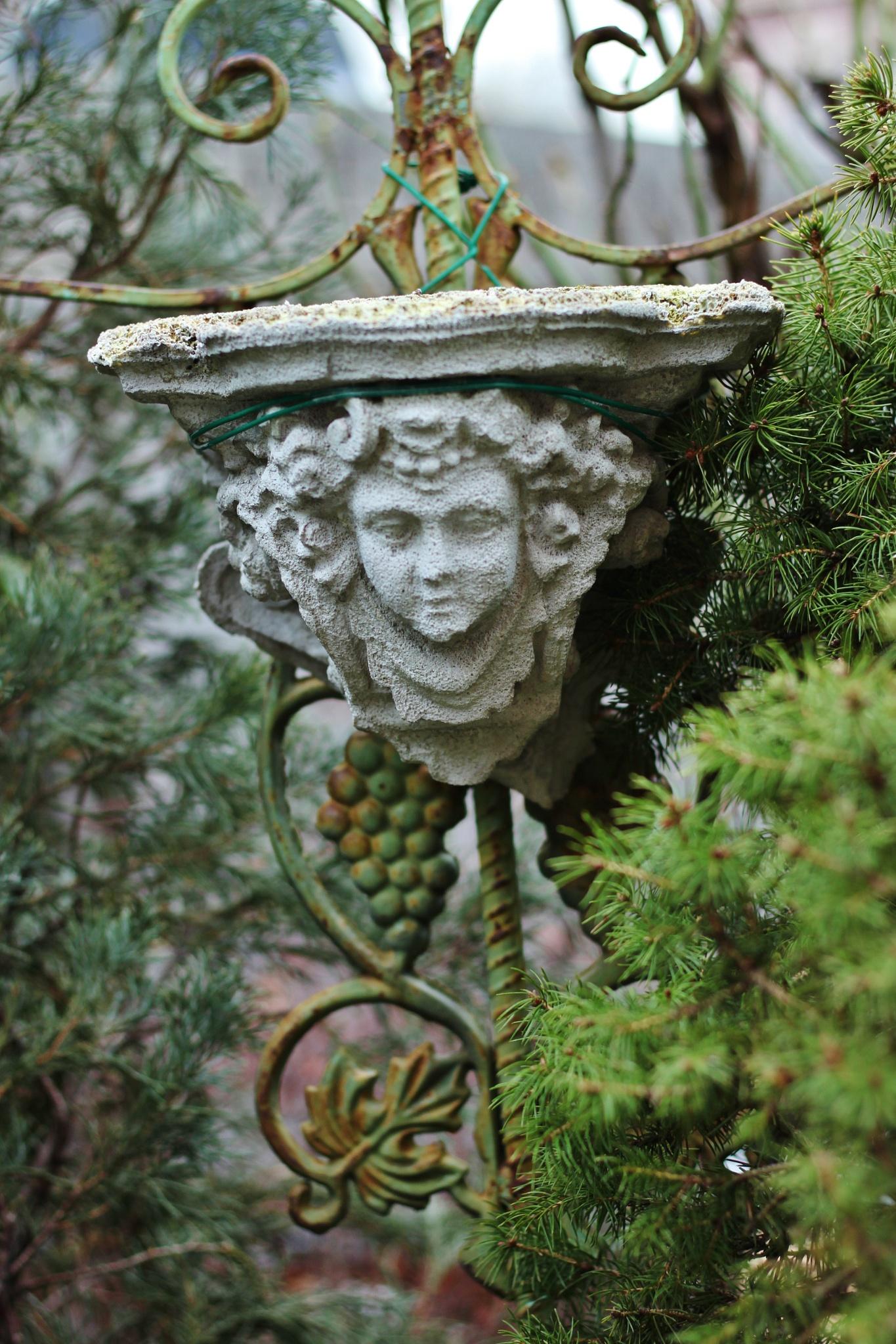 Decoration & jardin, by Liborio Drogo