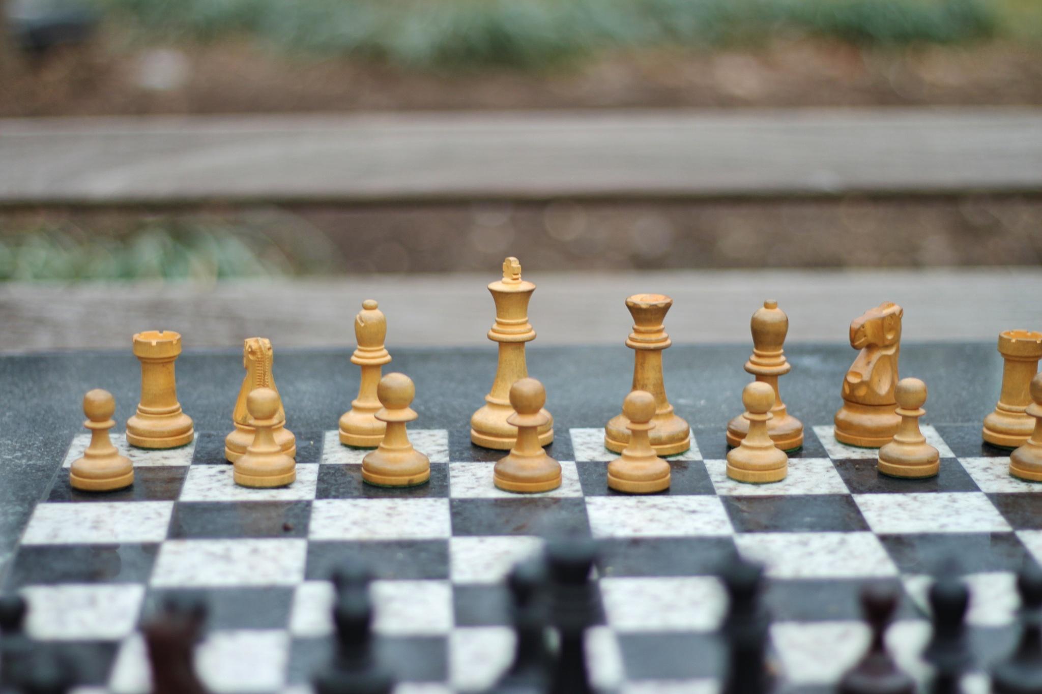 Game 4,. by Liborio Drogo