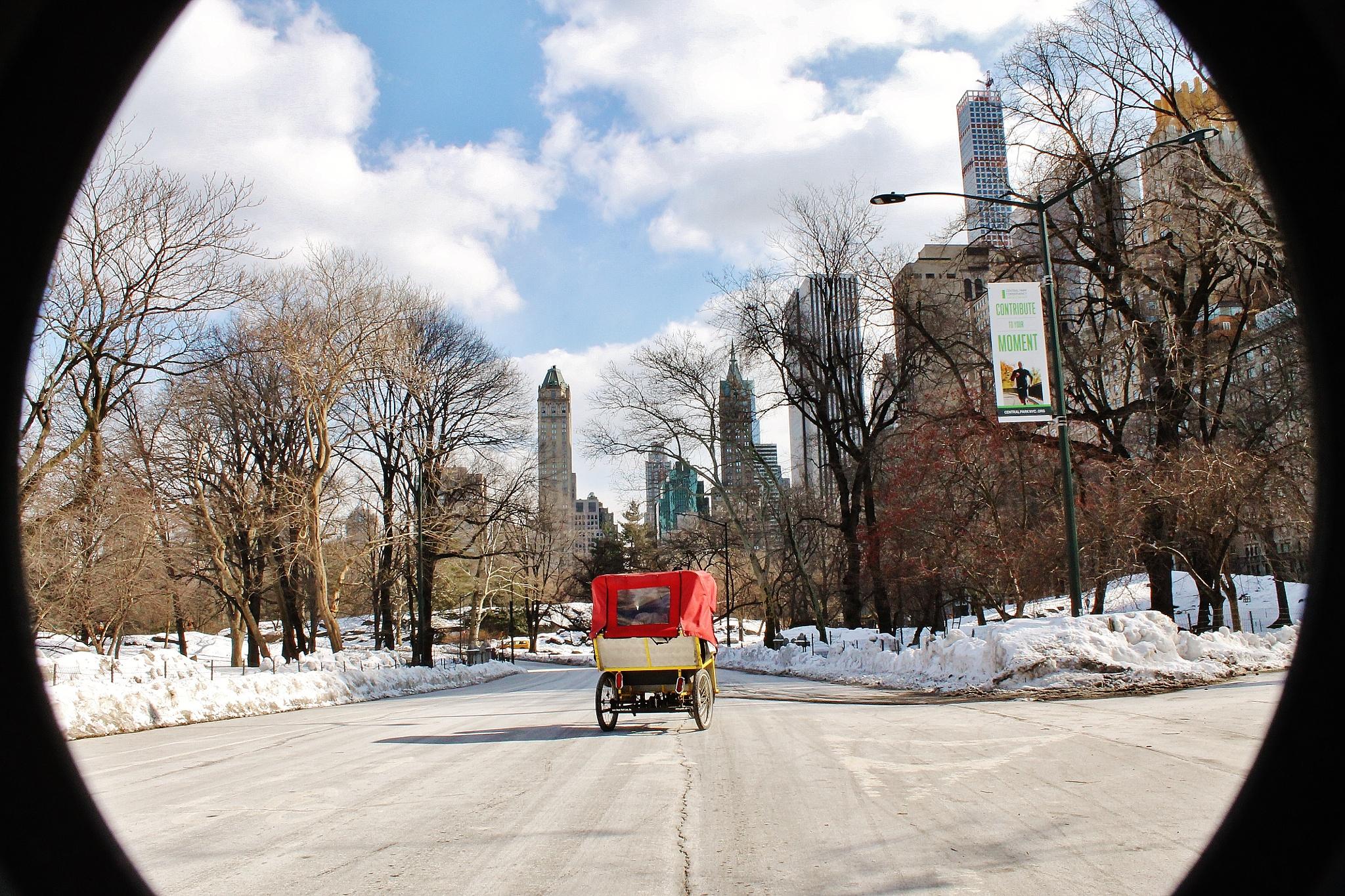 Central Park, by Liborio Drogo
