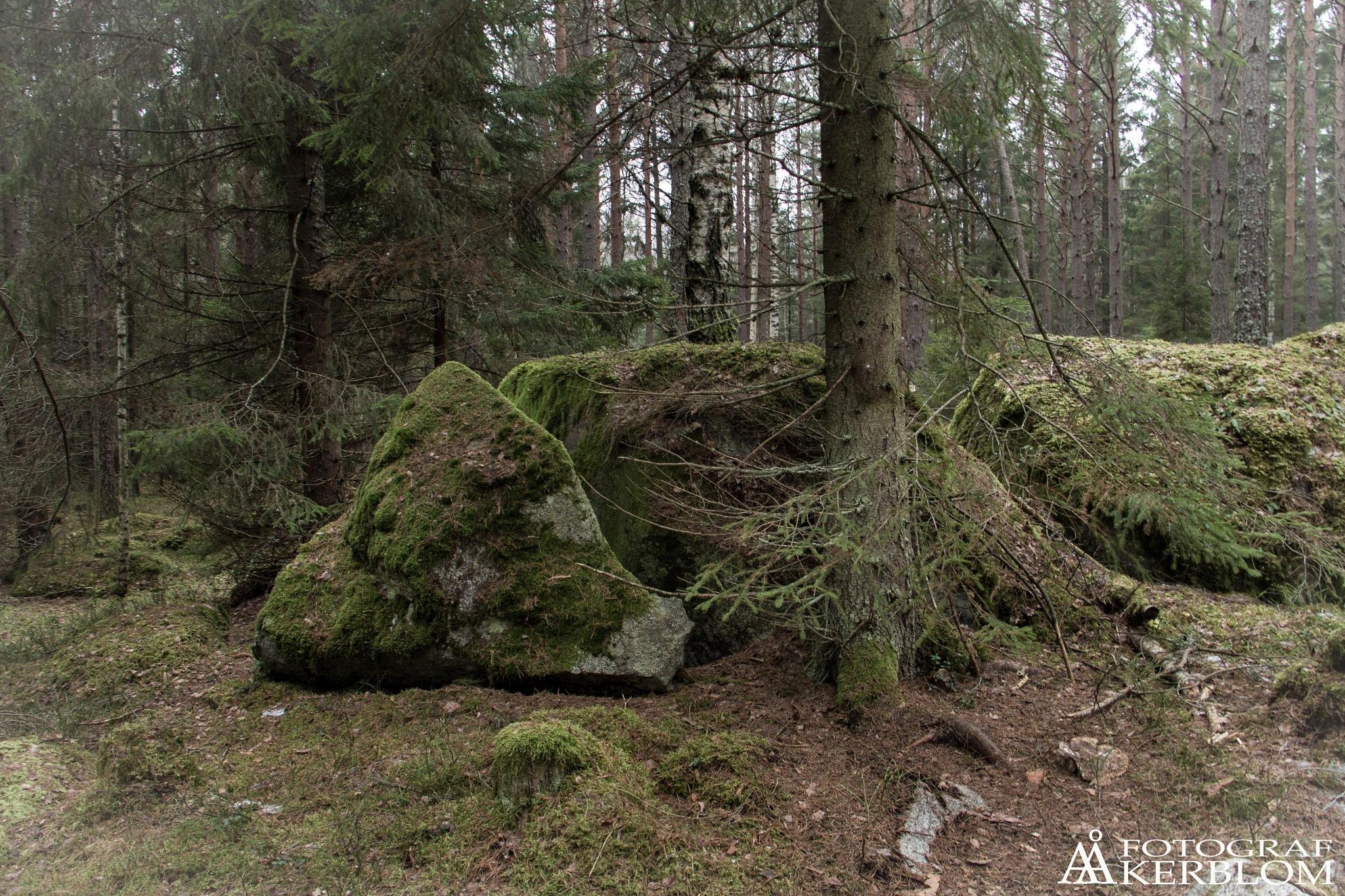 The broken stone by Anders Åkerblom