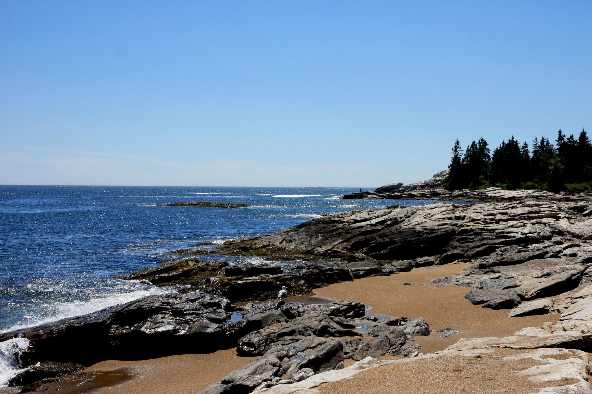 Reid State Park Rocky Shoreline by Wendy Farrington