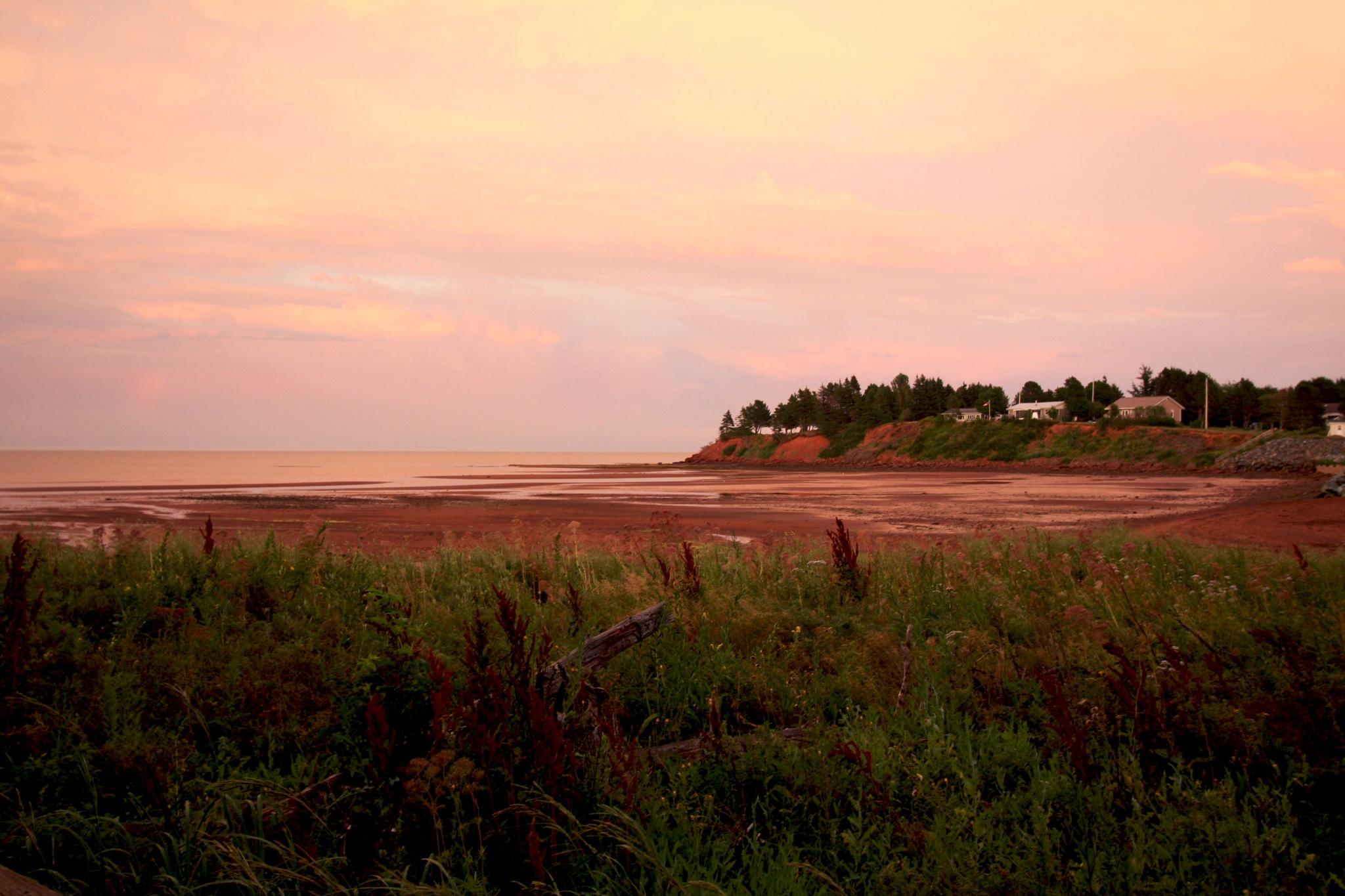 Amherst Provincial Park, Nova Scotia by Wendy Farrington