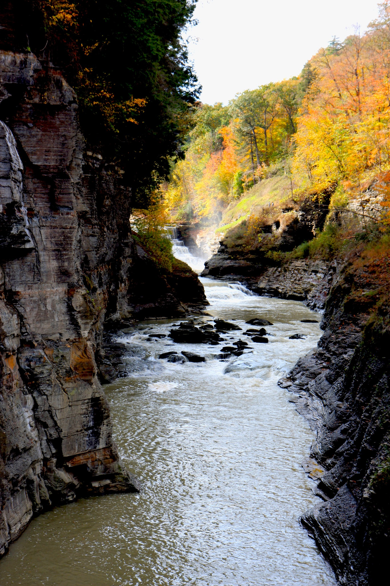 Letchworth Falls State Park by Wendy Farrington
