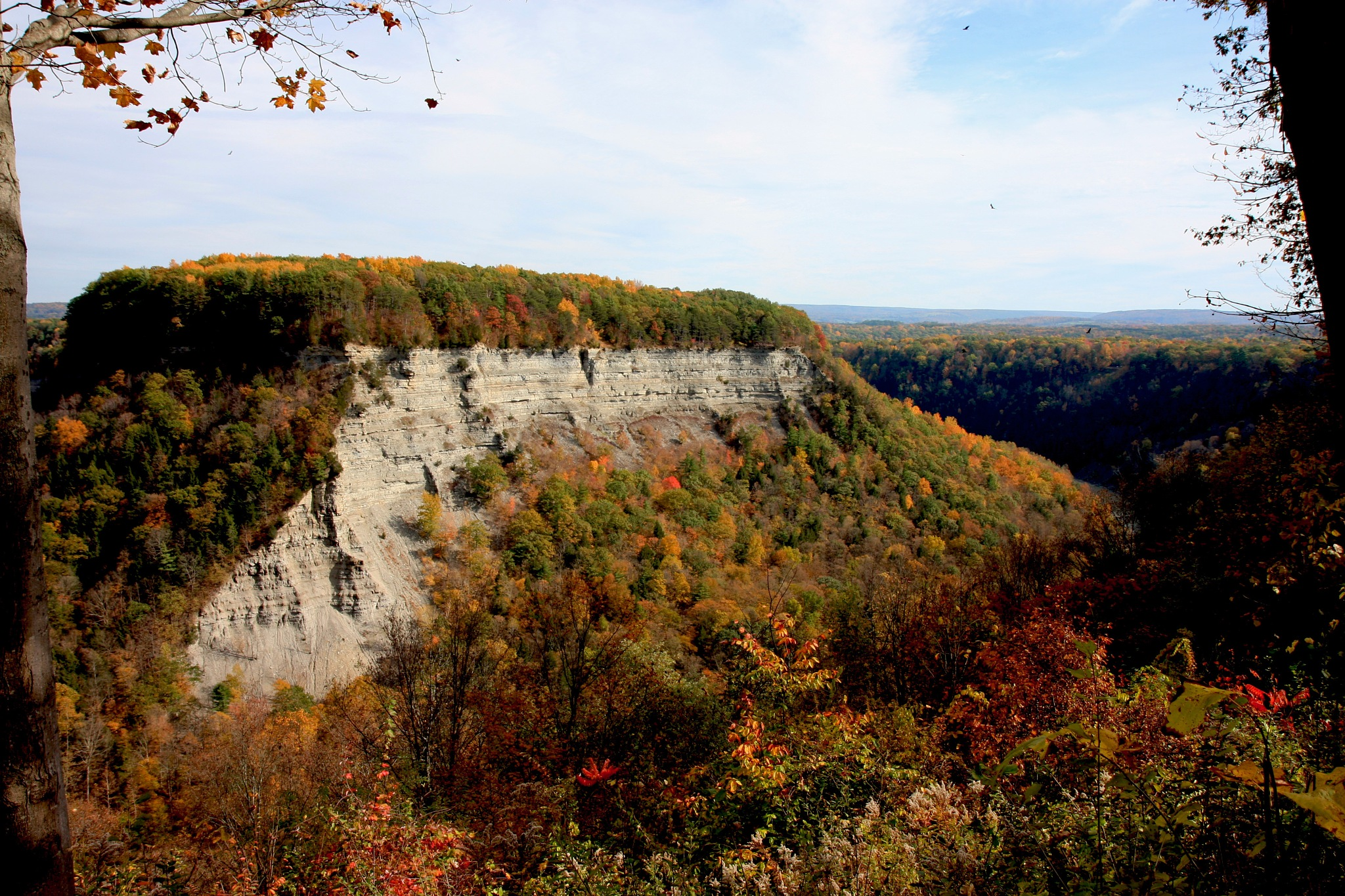 Letchworth State Park by Wendy Farrington