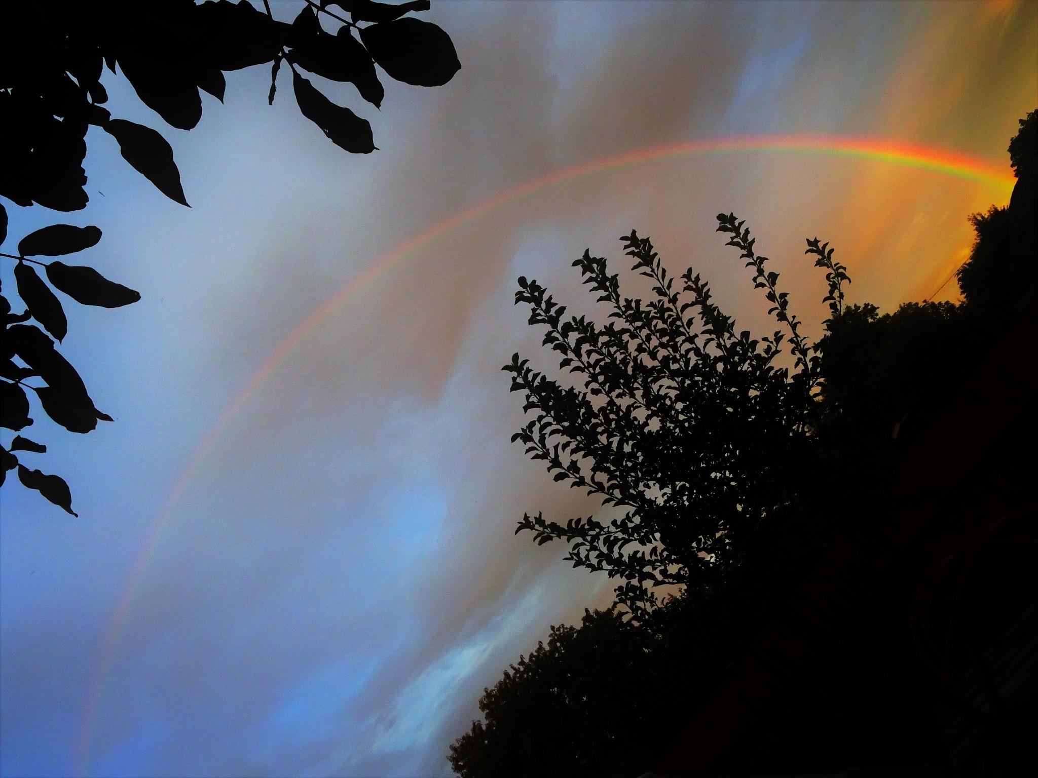 Autumn rainbow by Cristina Loghin