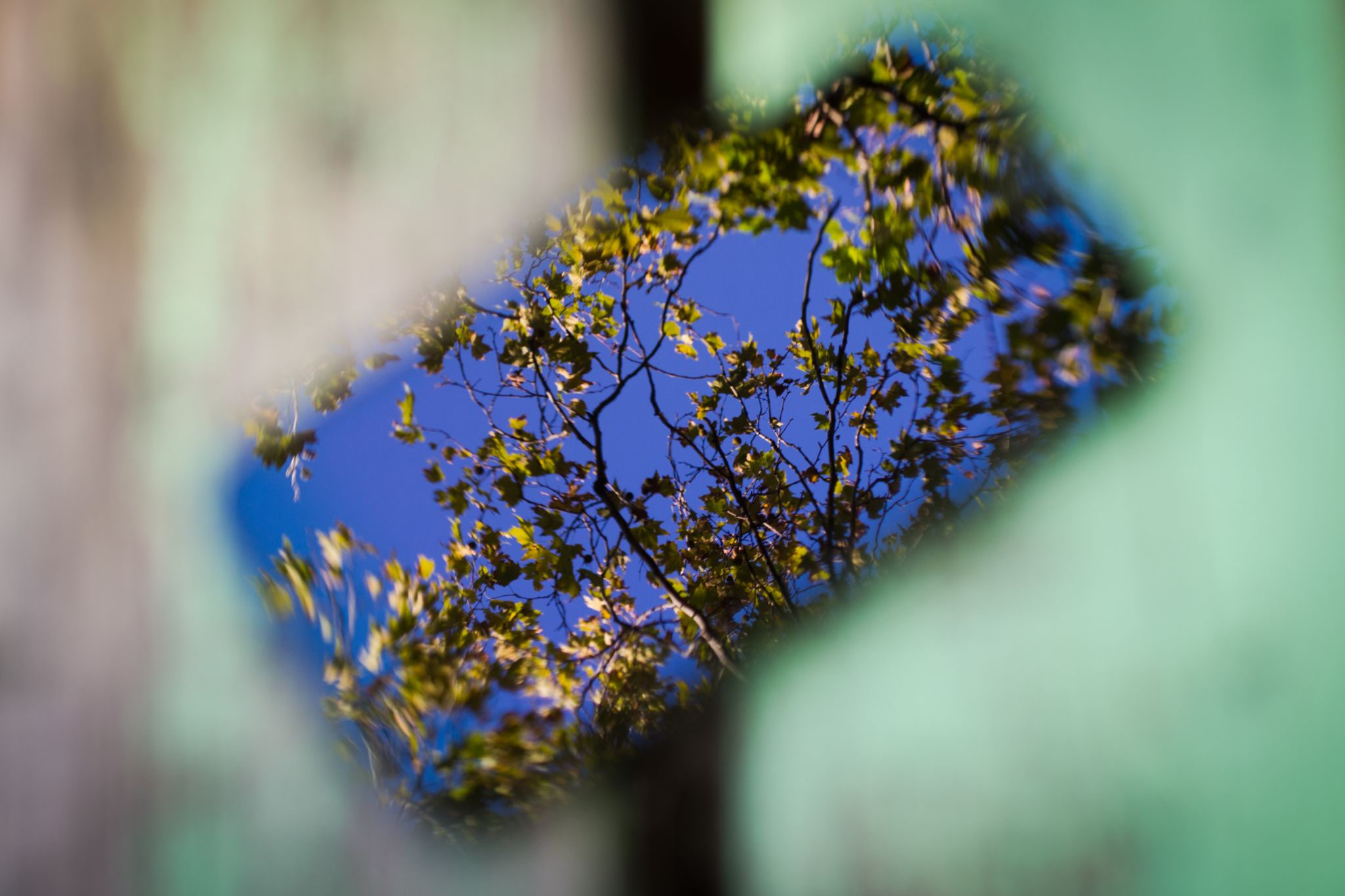 Untitled by Milen Kolev