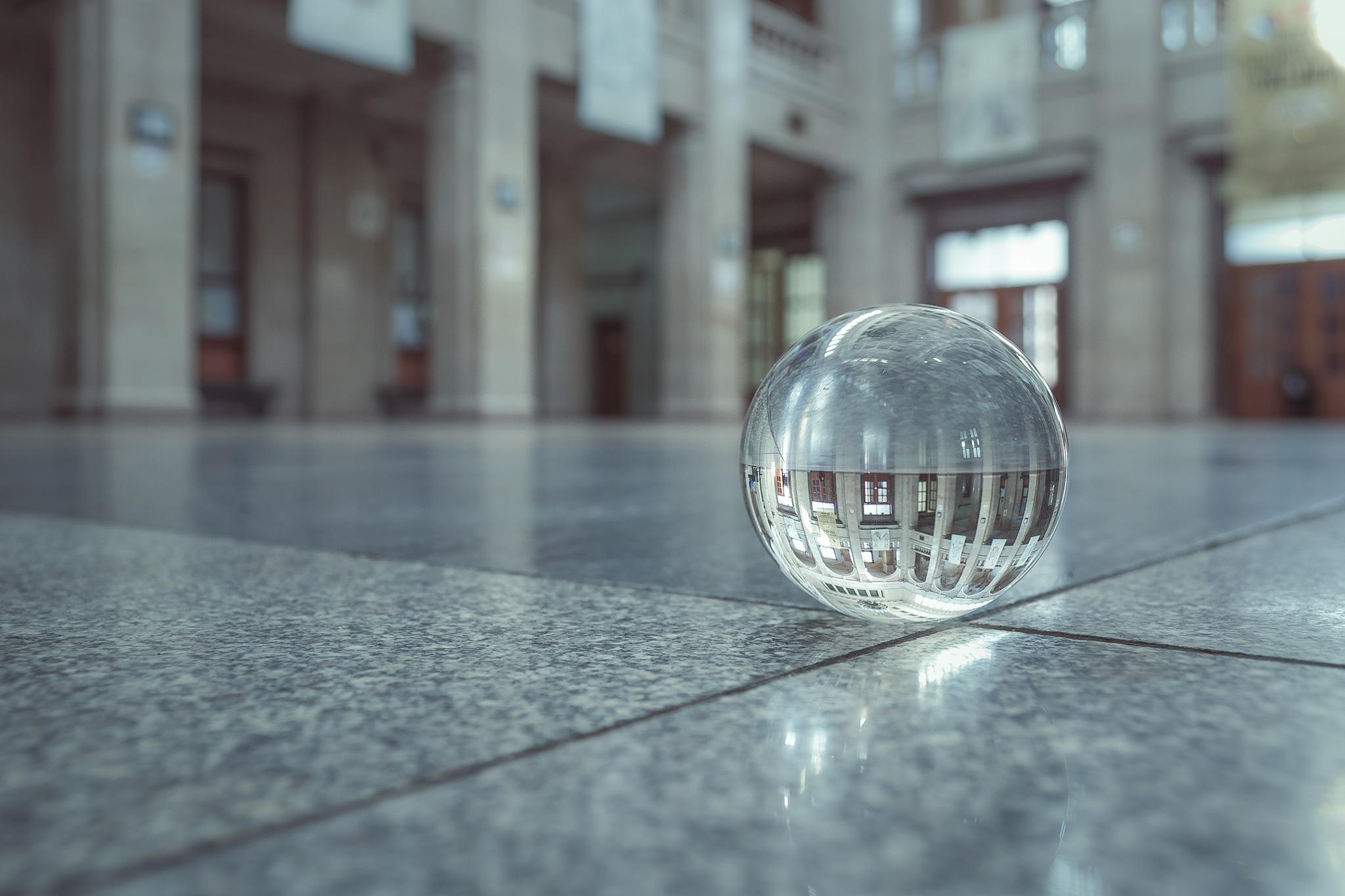 Daylight by Milen Kolev