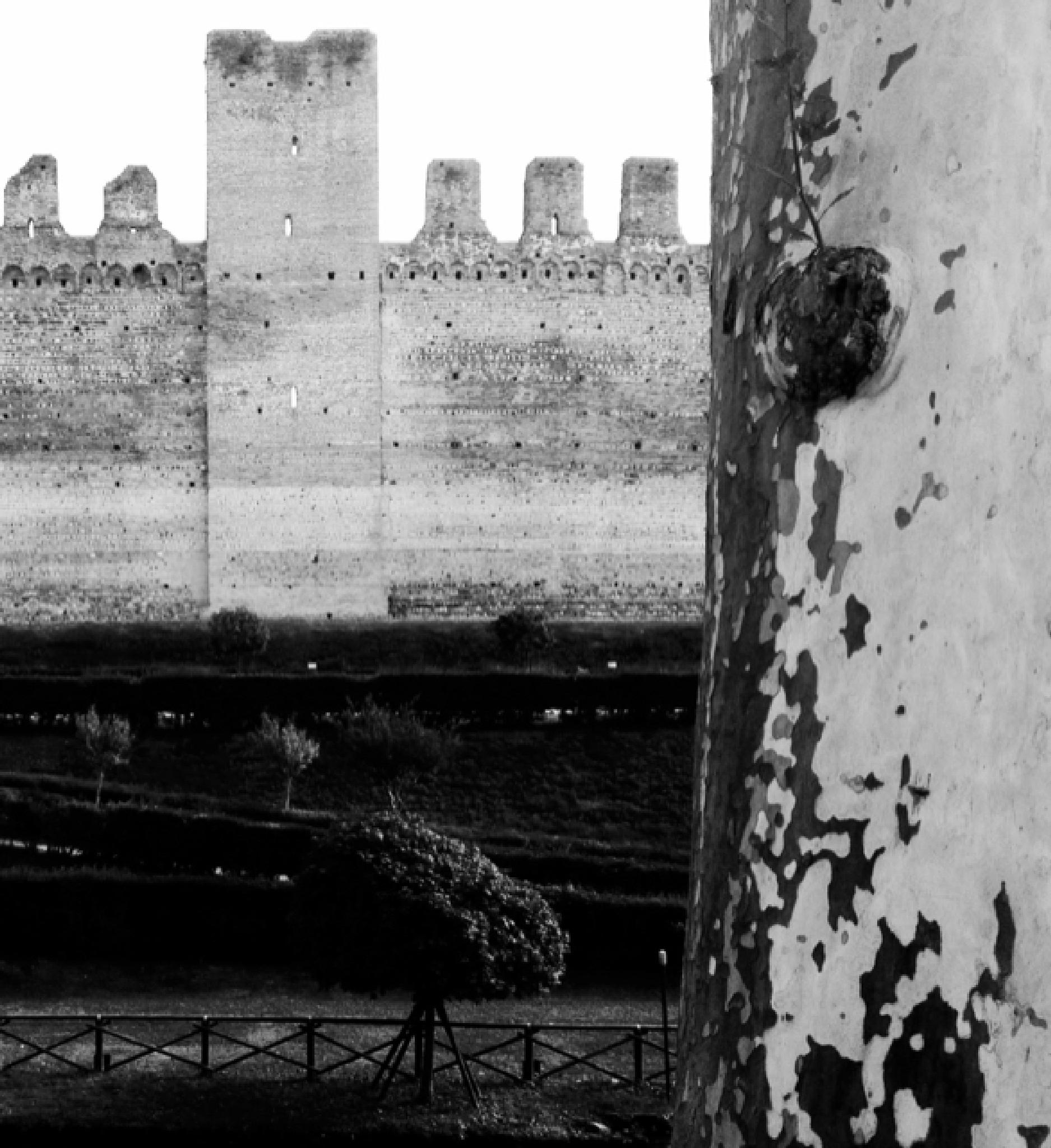 IMG_0159 by Alessandra Fierimonte