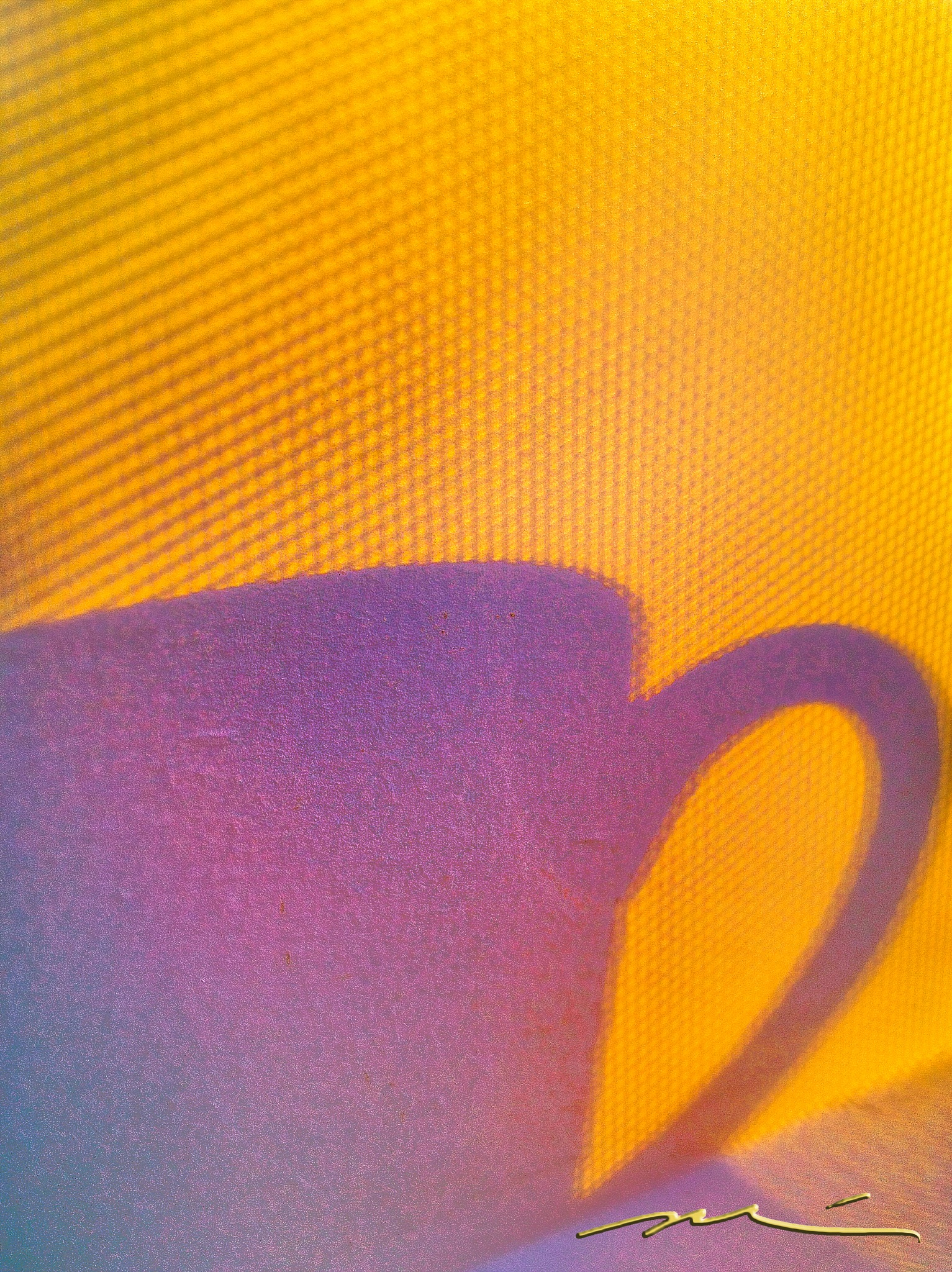 The Shadow of a Coffee Cup Sitting in a Screen Window by Michael D. Davis
