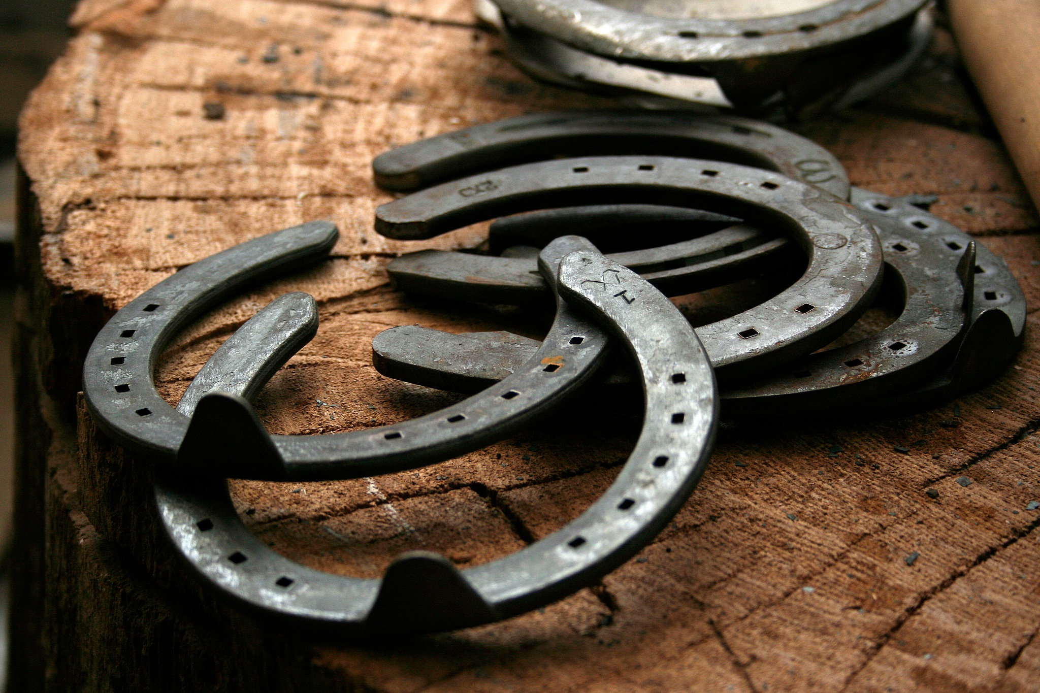 horse shoe by Maximus07