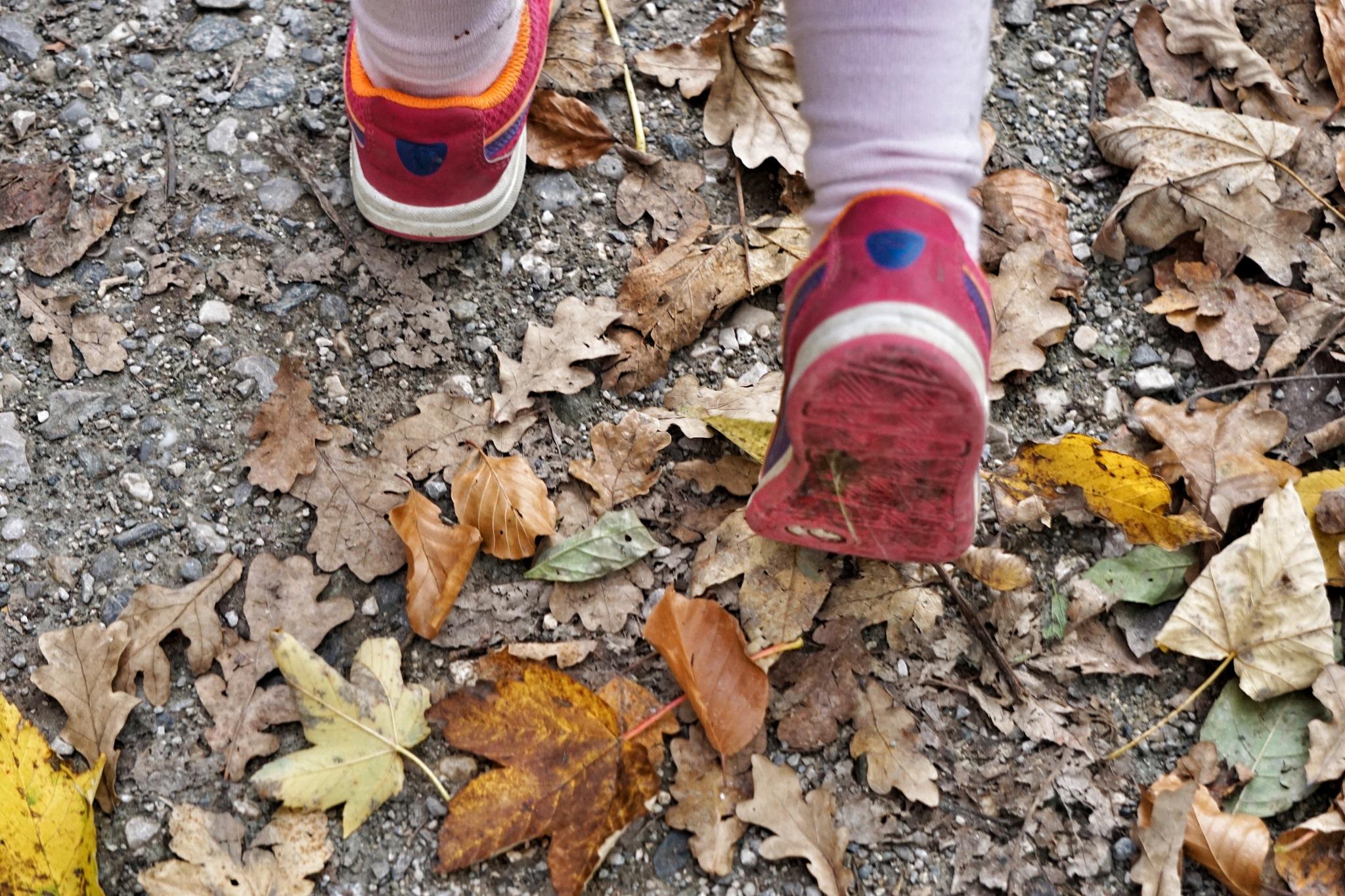 Walking on autumn leafs by noerpel