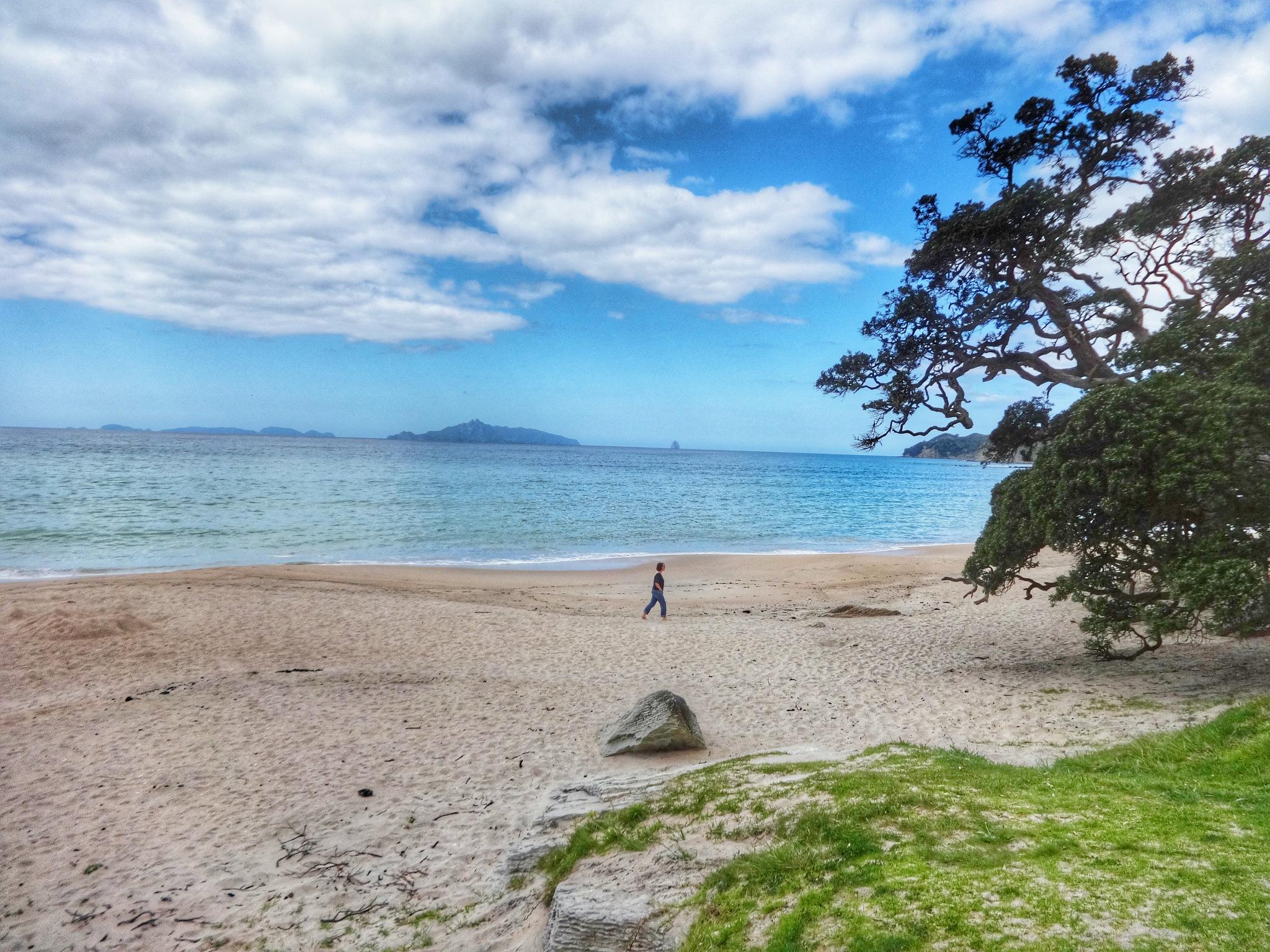 beach scene by noerpel