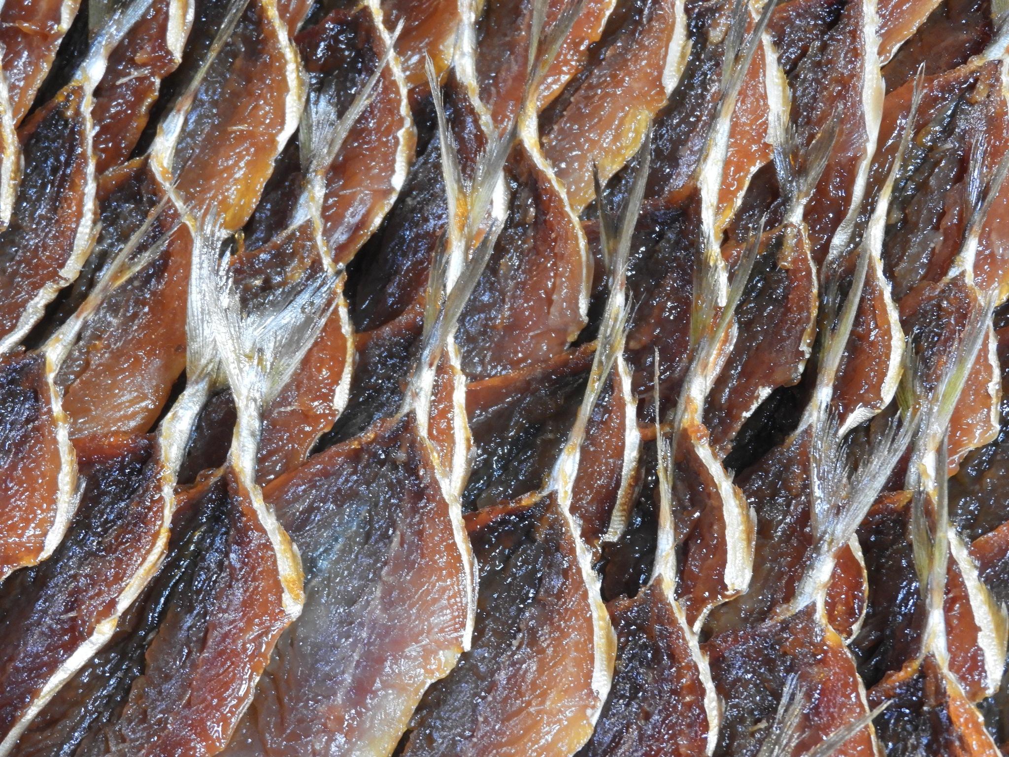 fish by Henny van Broekhoven