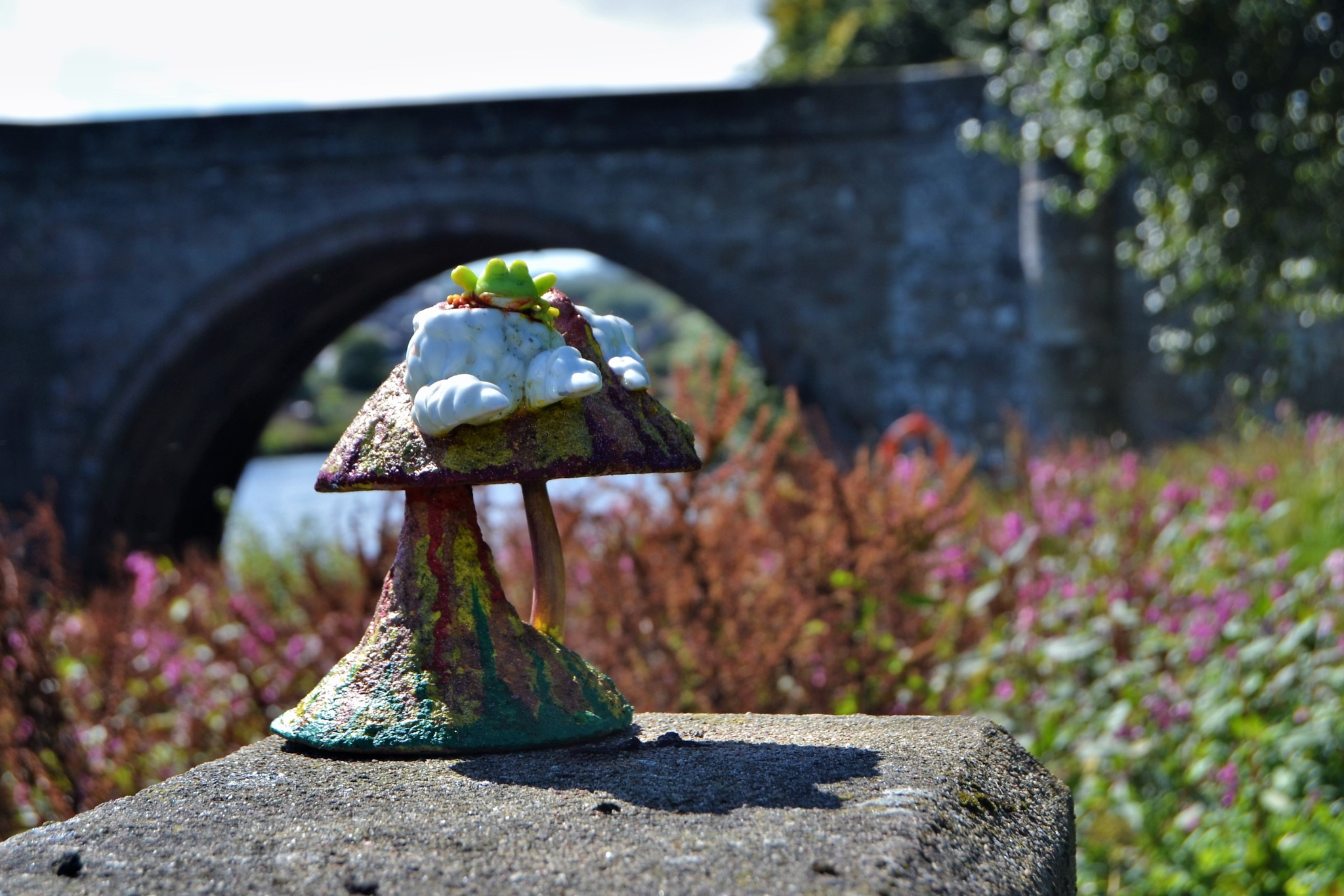 Frogstool. by Anthony Holderness