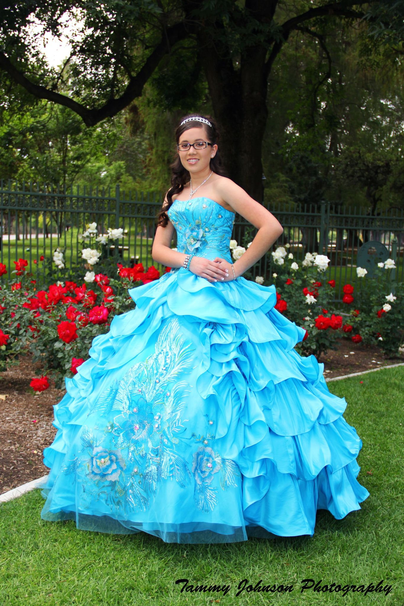 Quinceanera Sweetheart by Tammy Johnson