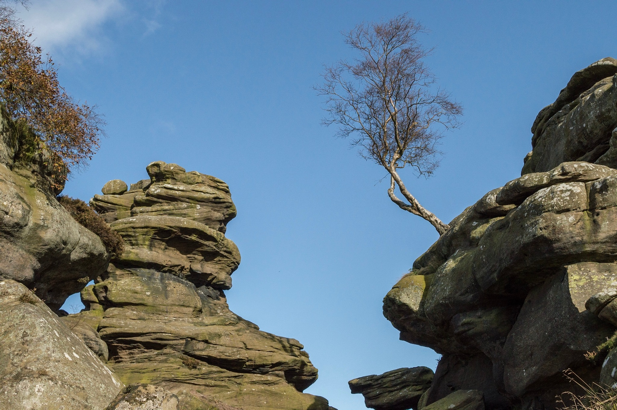 Brimham rocks by Kim Walker