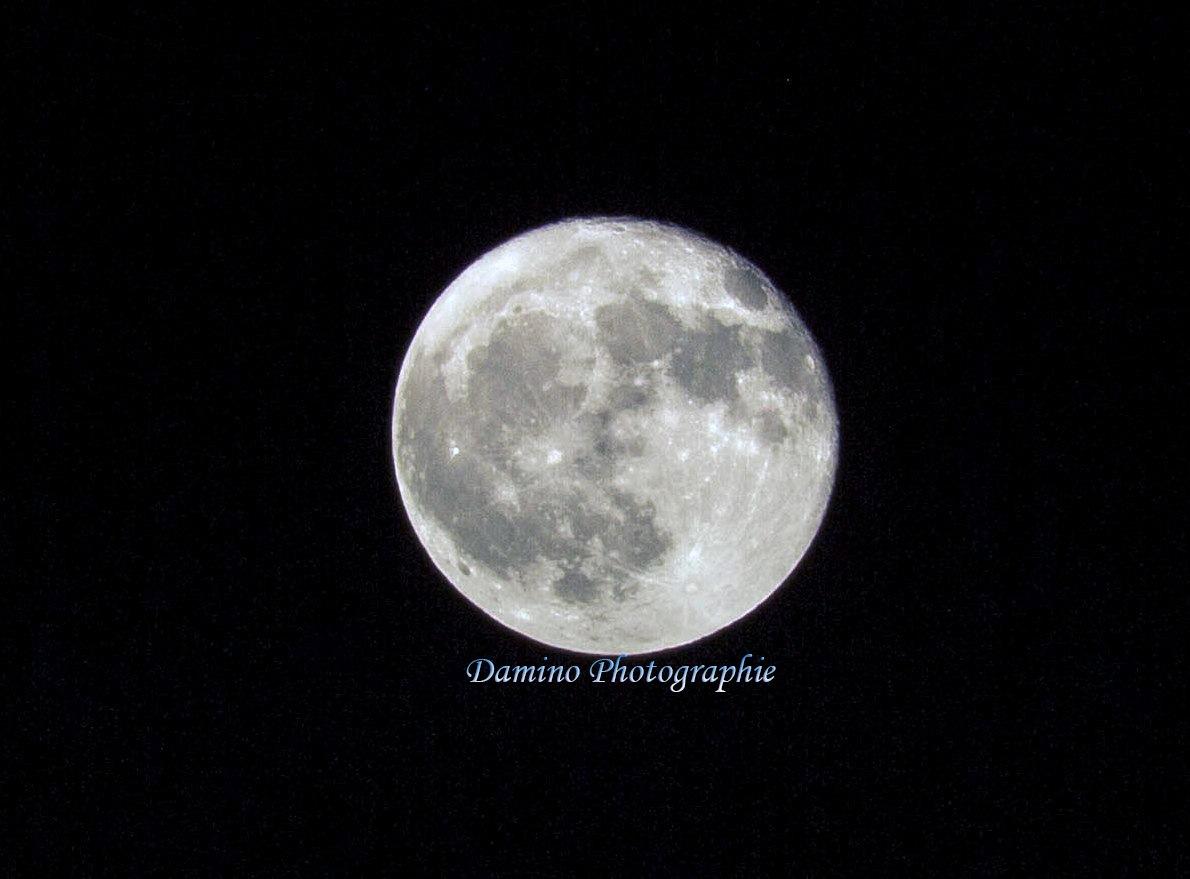Pleine lune by Damiano Damiani