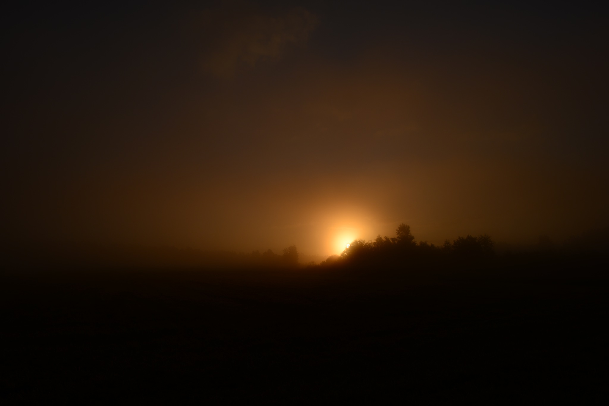 Dawn a bright flash of the sun in the morning summer thick fog by SergeiKudriavtcev