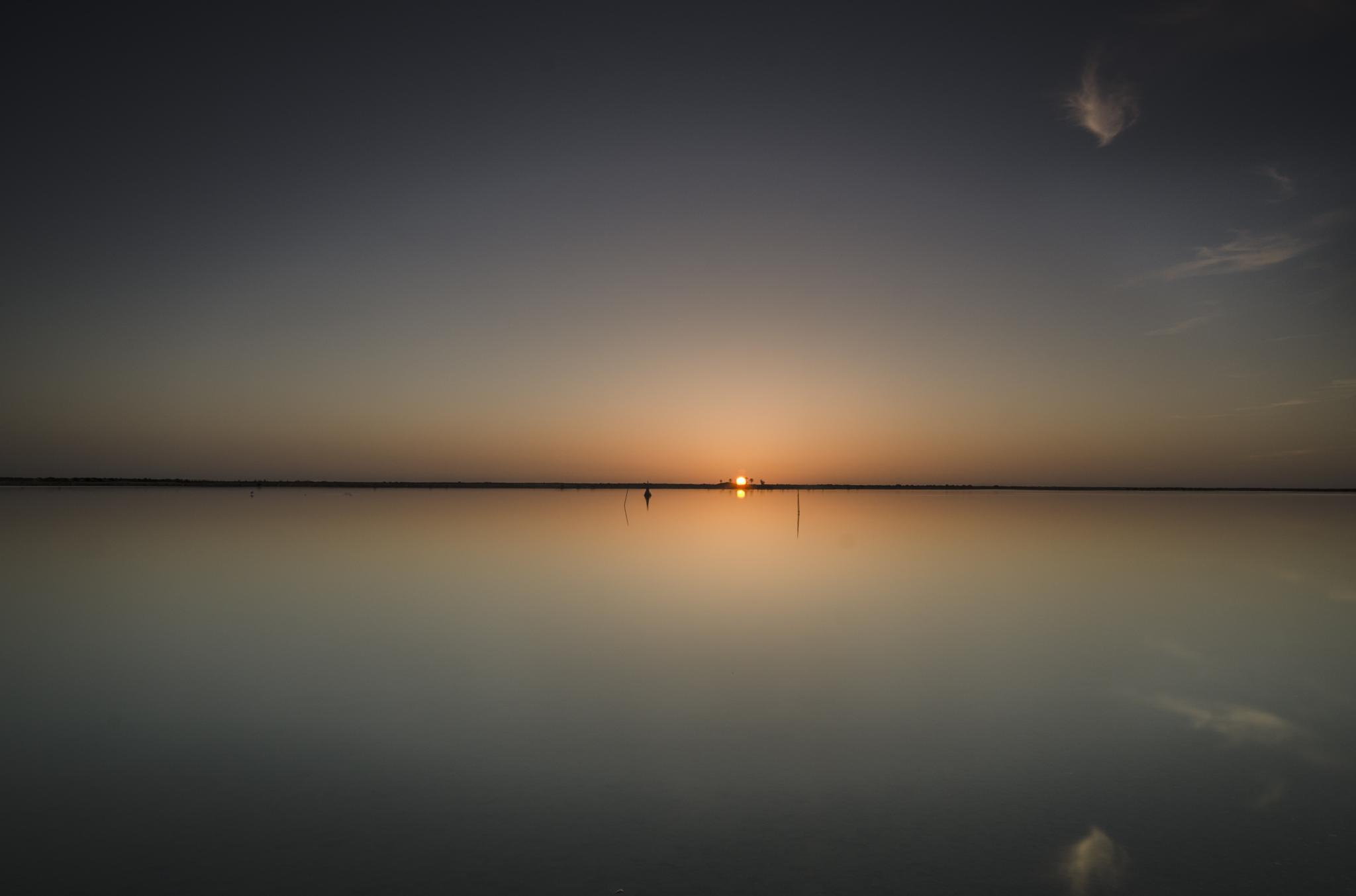 la laguna  by Jose Soto Munuera