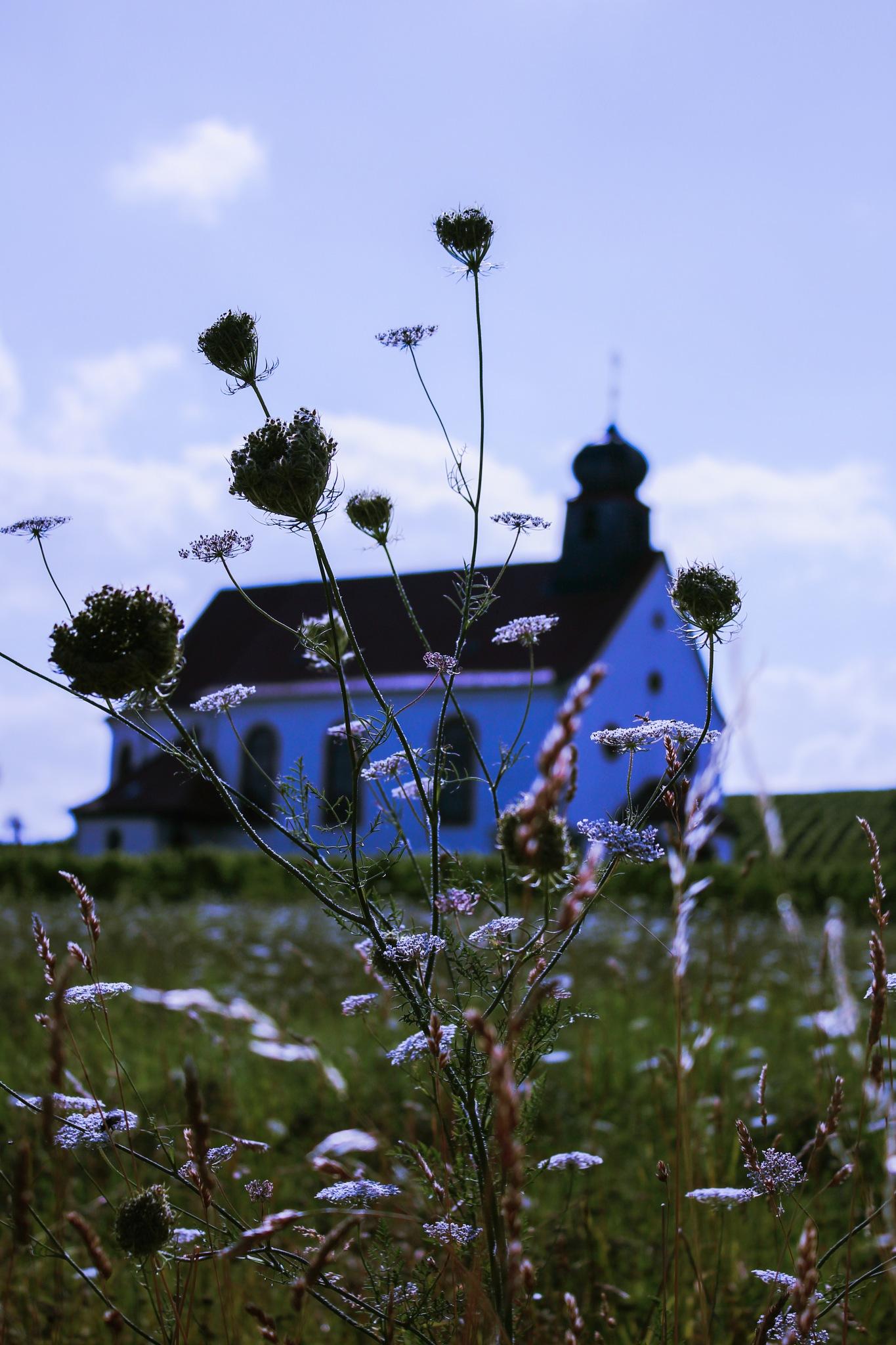 Summer 3 by Hillenbach Kerstin