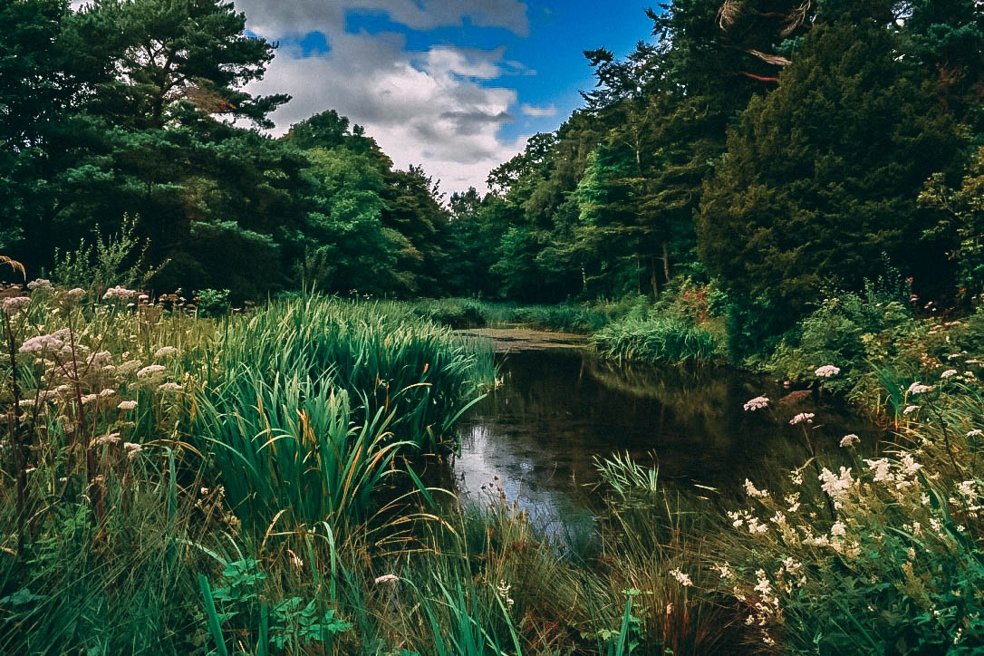 Lowther Castle grounds - Lake District  by Zoe