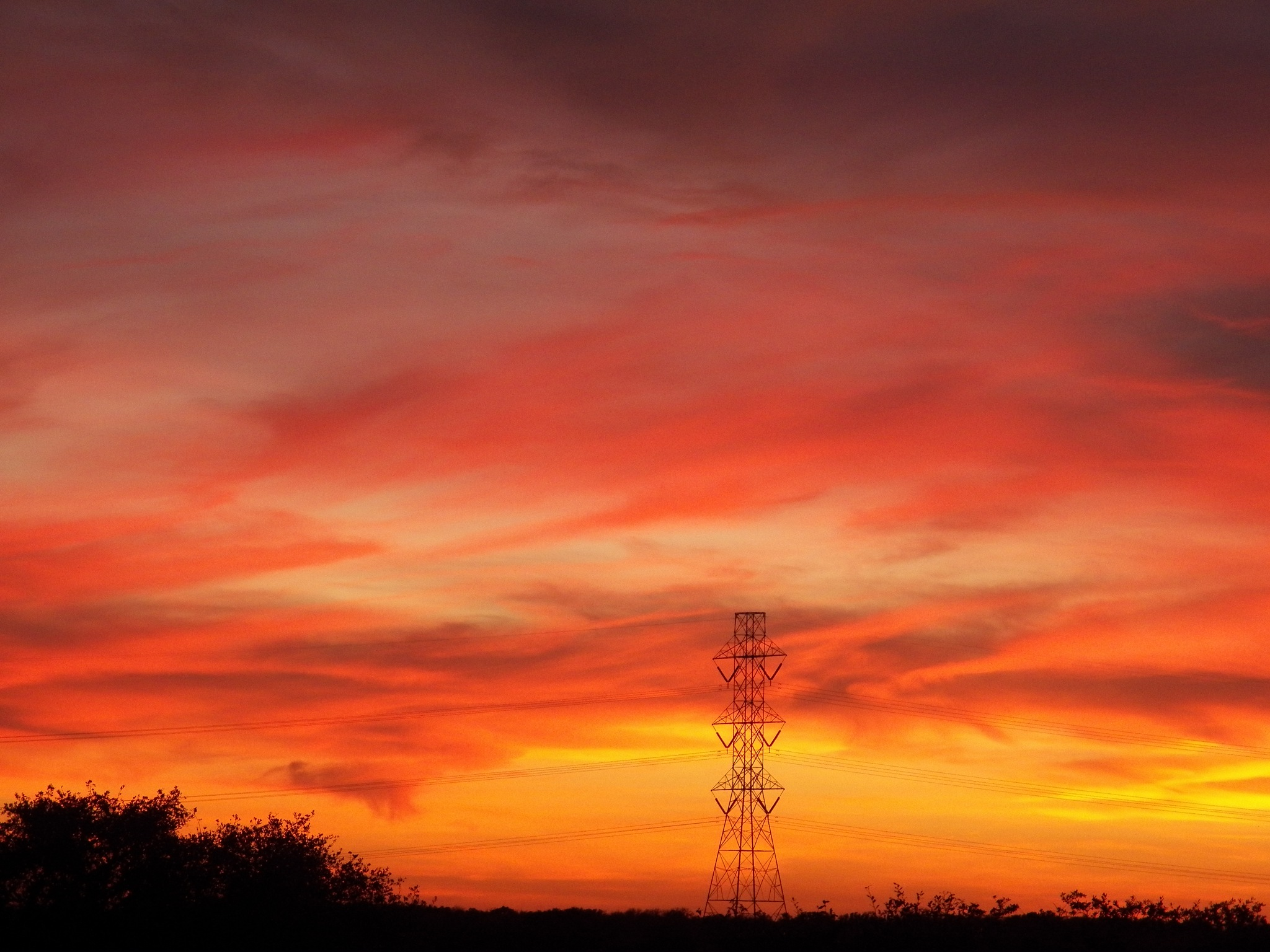 Fire in the Sky by Leslie Rabke