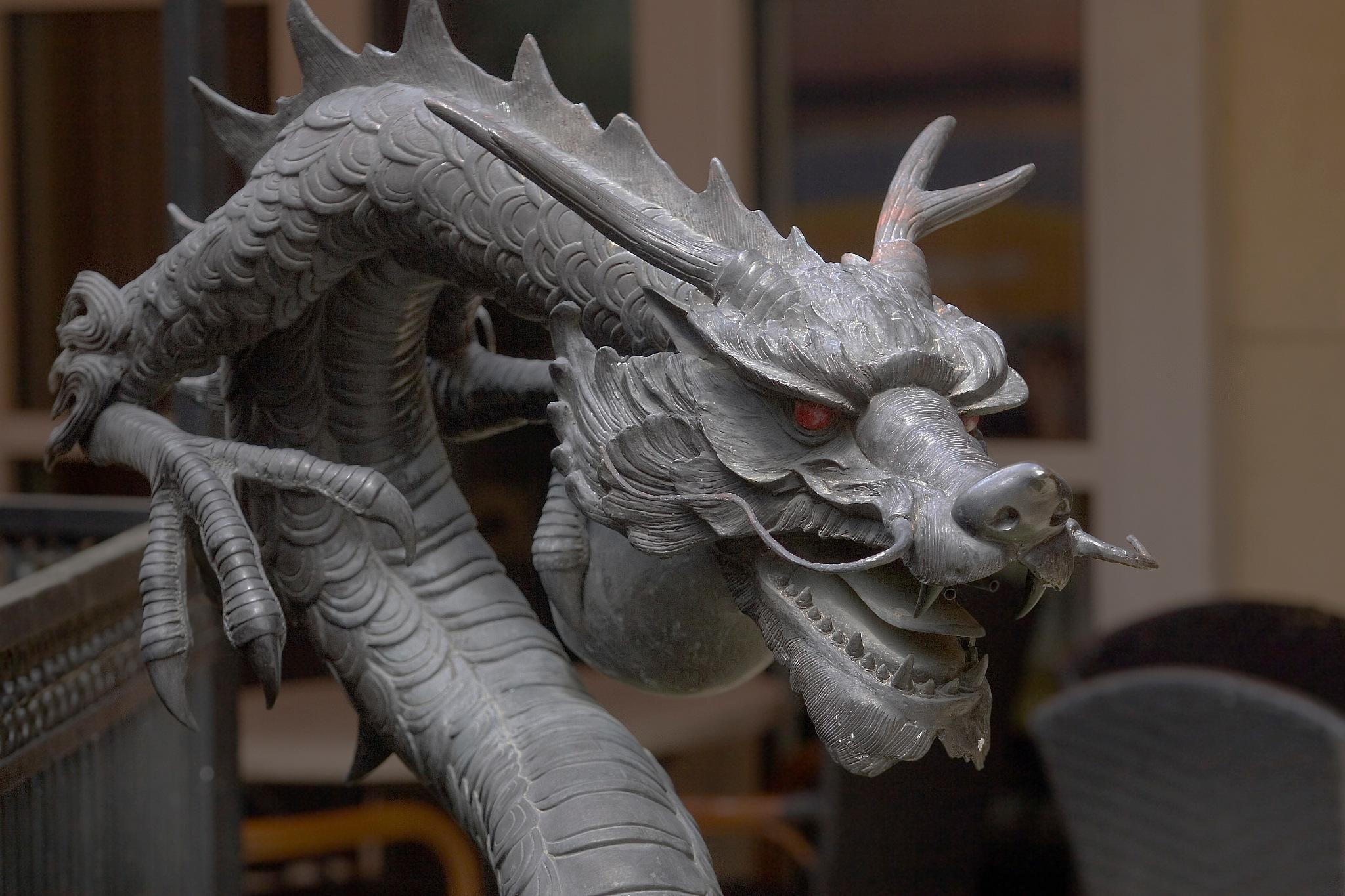 zsa dragon by Kevin Palmer