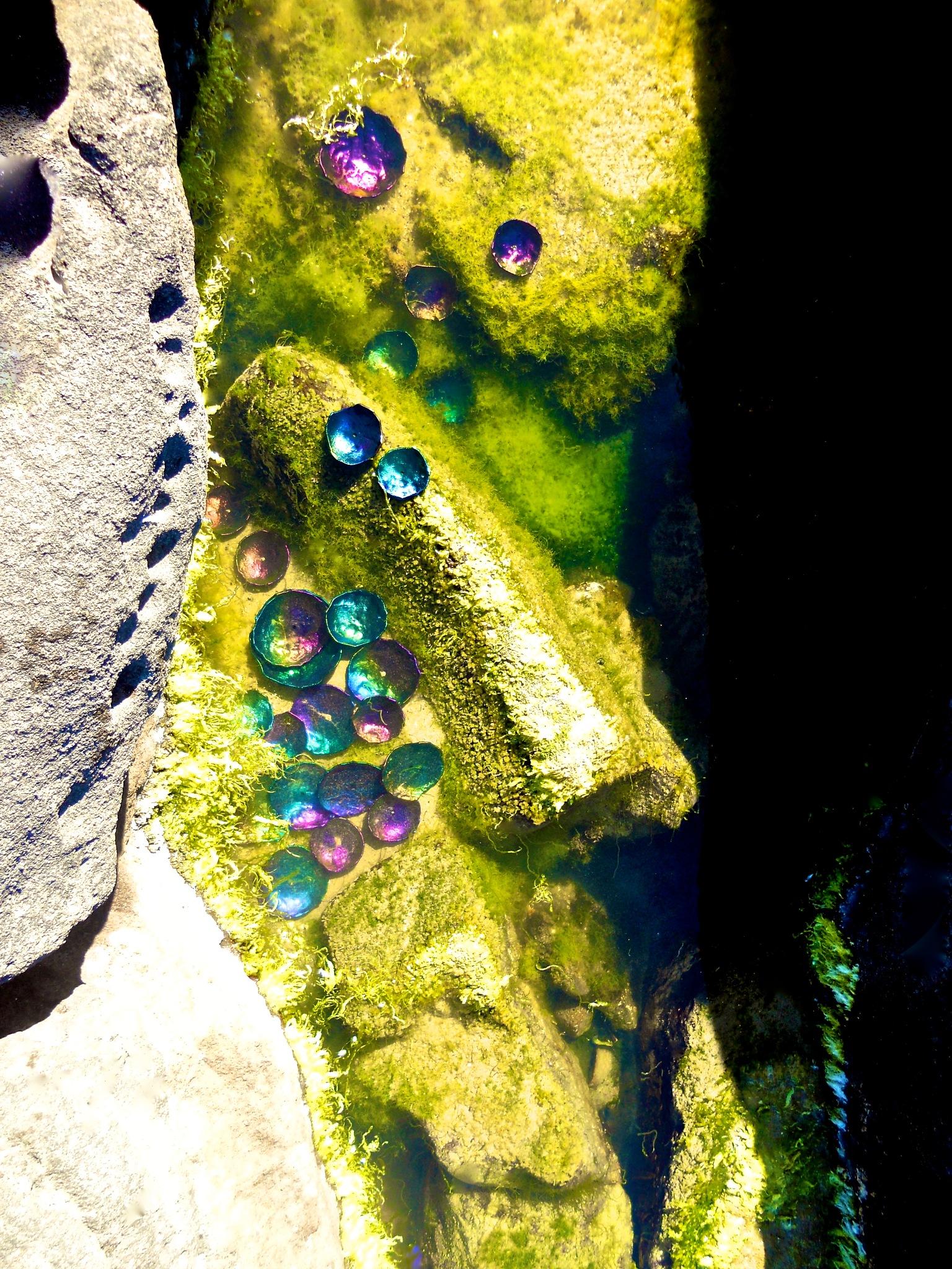 tide pools by VISIONARYARTMAN