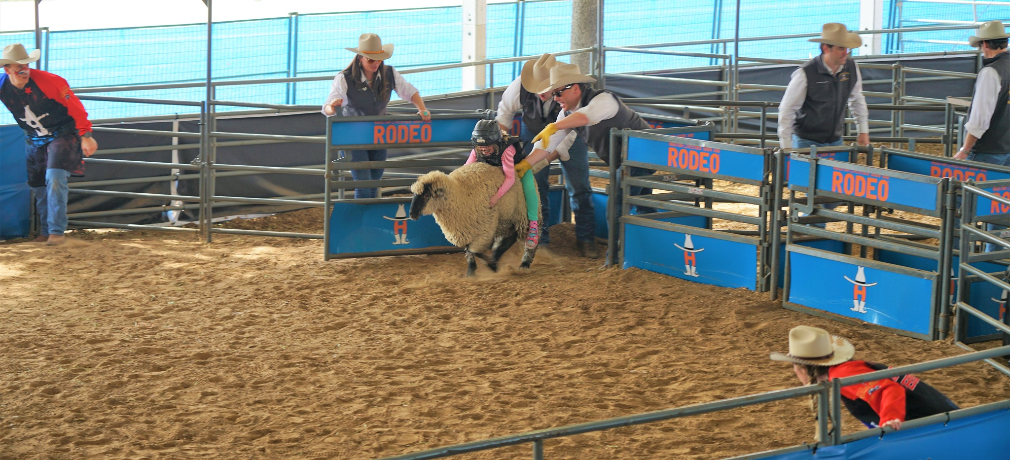 Mutton Busting by MichaelDorsey