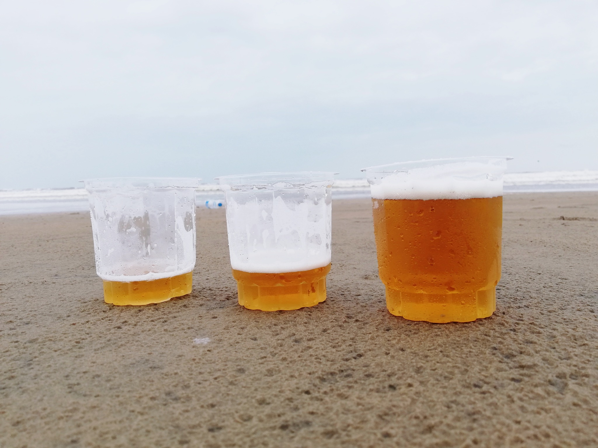 beer by T Kunwarpal Singh