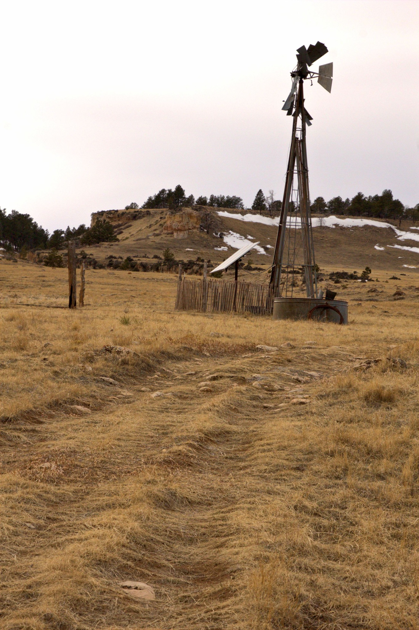 Old Abandoned Windmill by Carole Martinez
