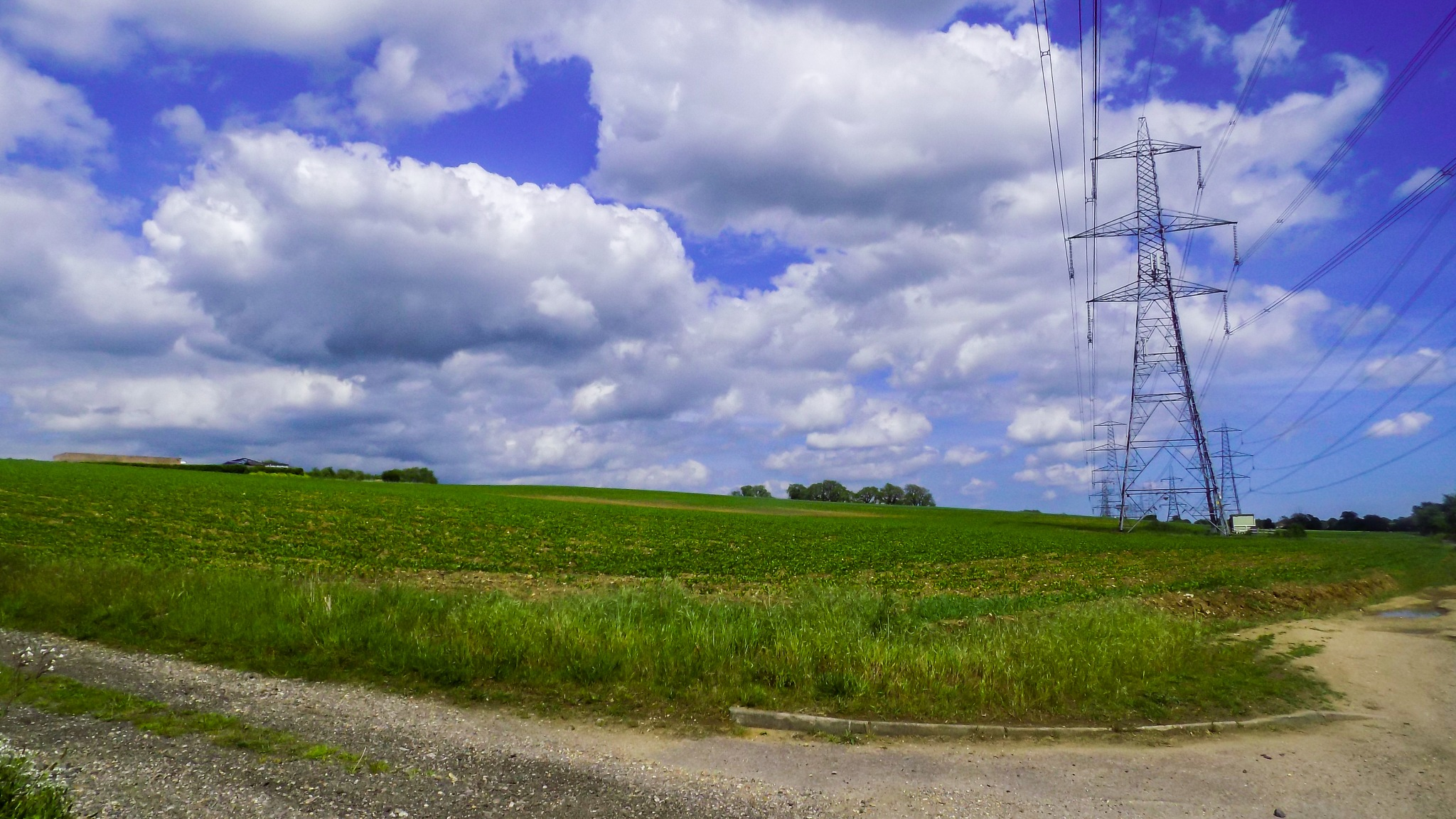 The Green Fields Of The Summer by LoganFrostPhotography