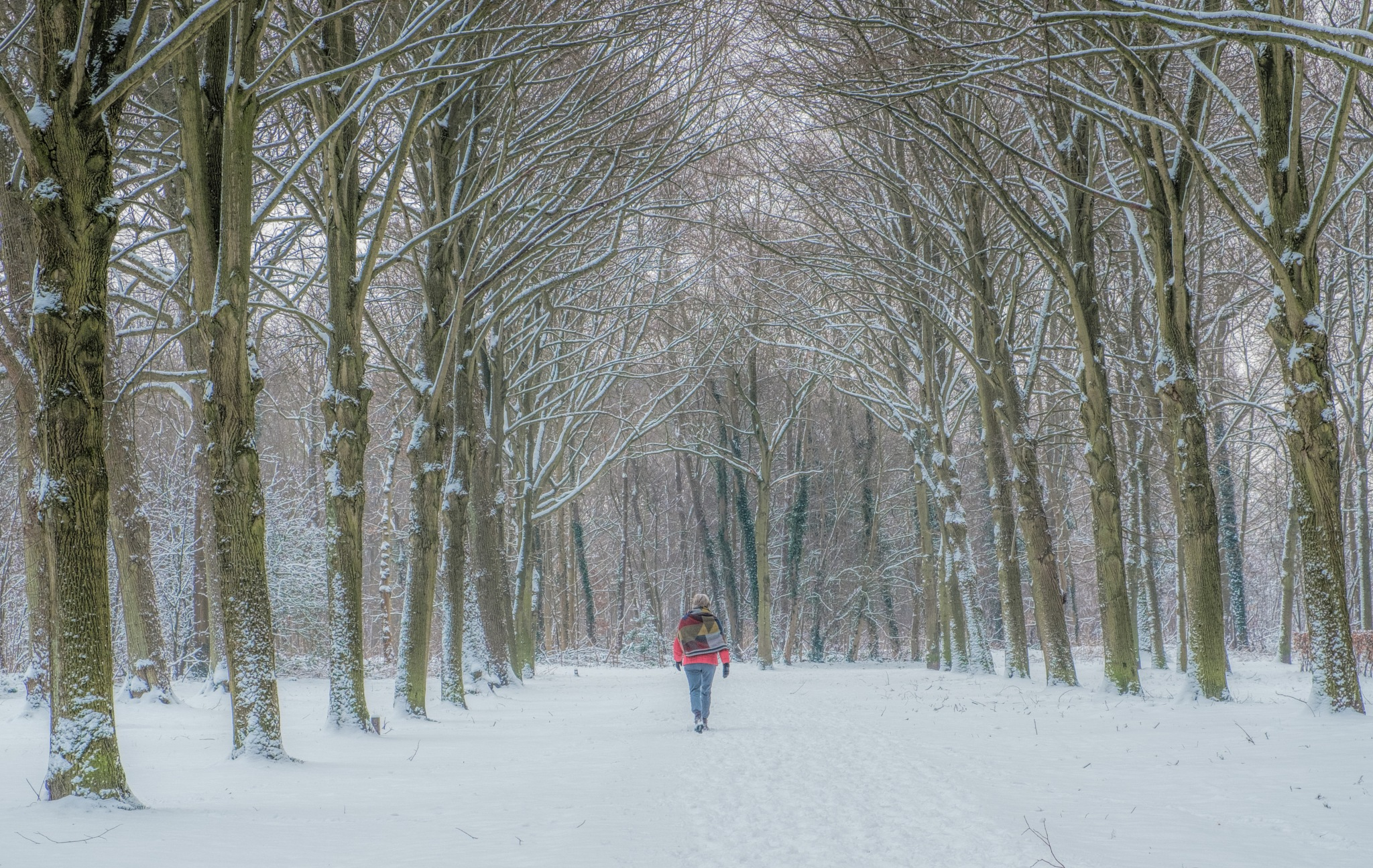 Lady in the snow by Henk Spijkerman