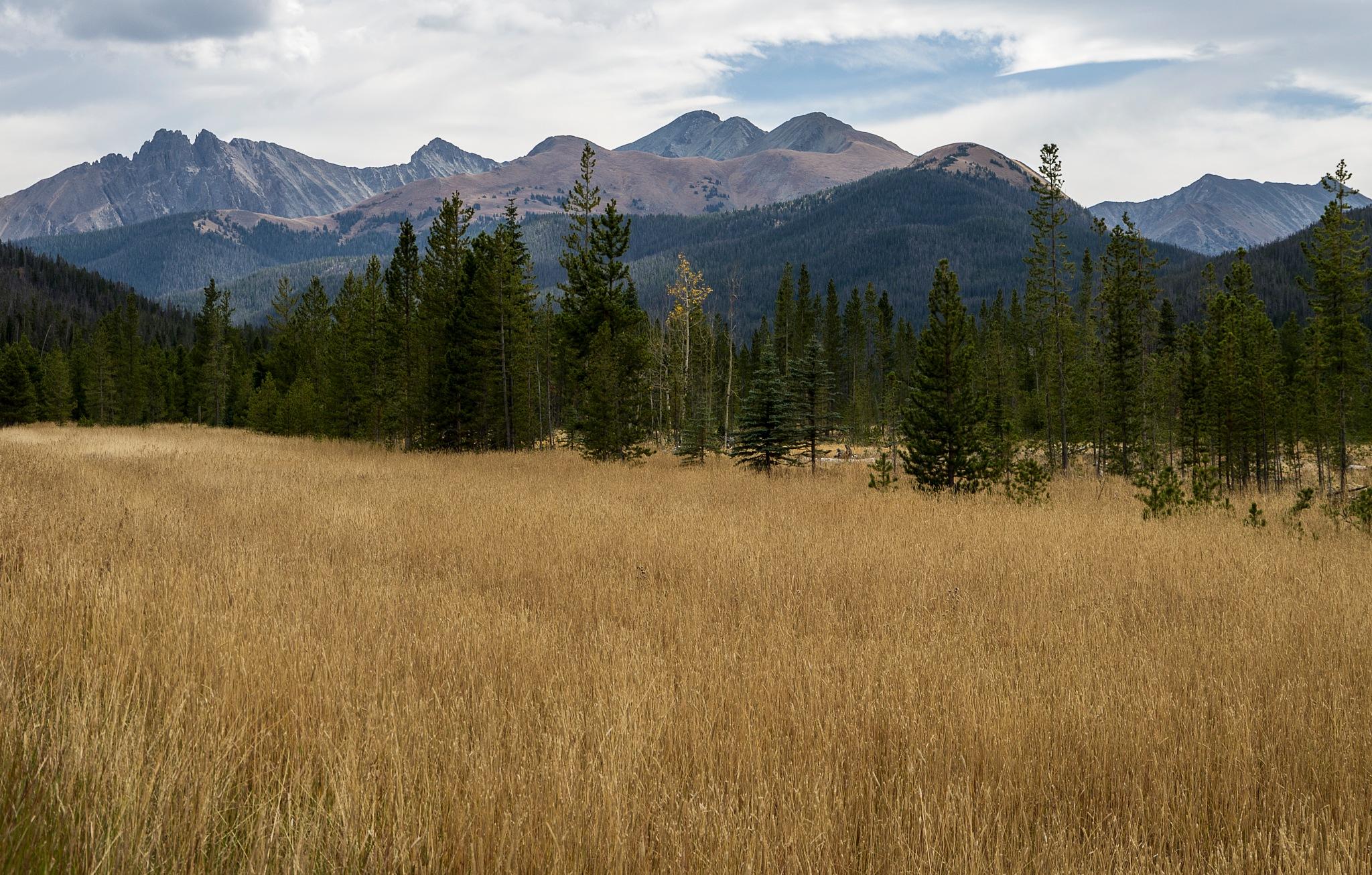 Colorado Fall #2 by junkitz01