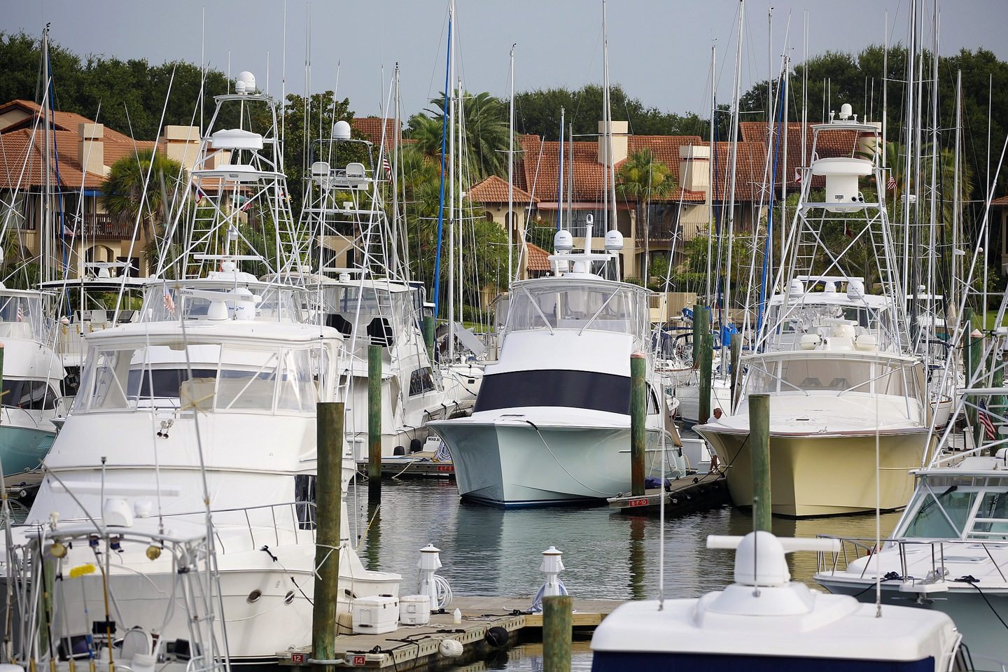 Towers of F Dock by ChuckL